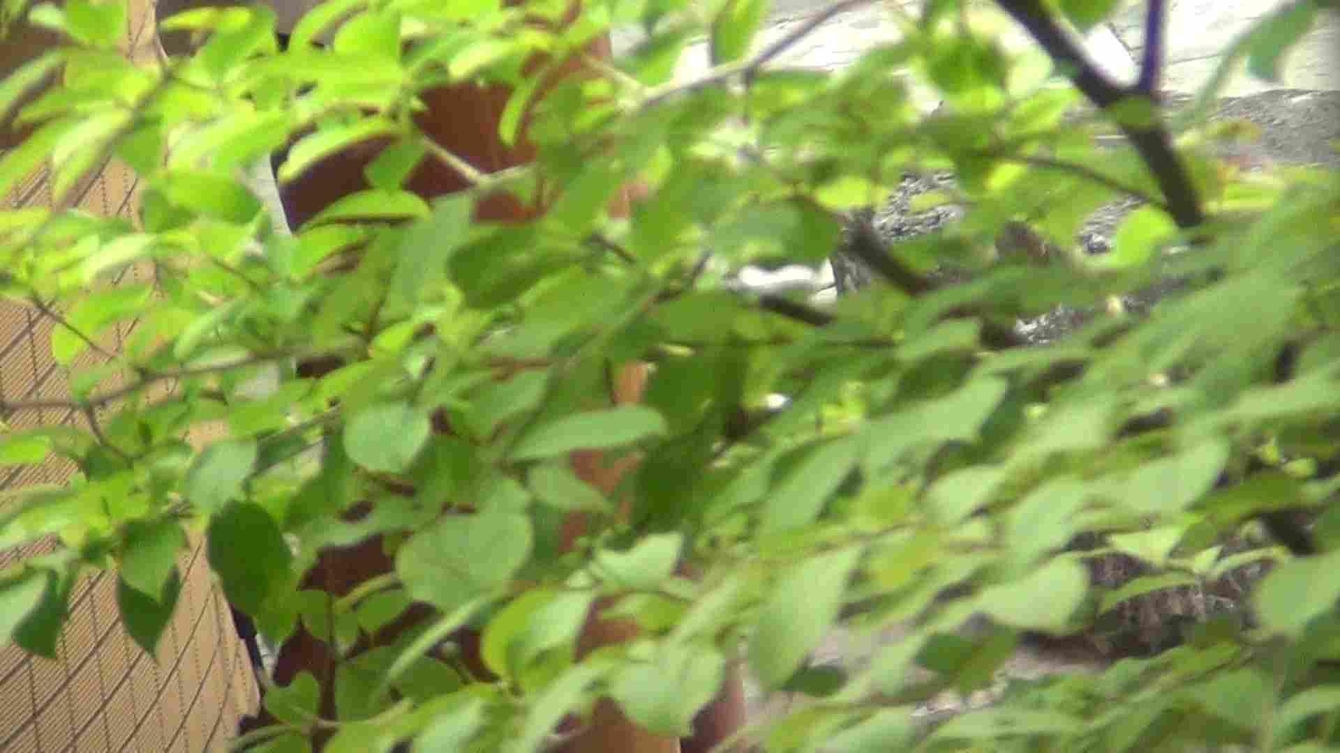 ハイビジョンVol.22 美魔女の小さくても張りのあるオッパイ 露天  56PIX 20