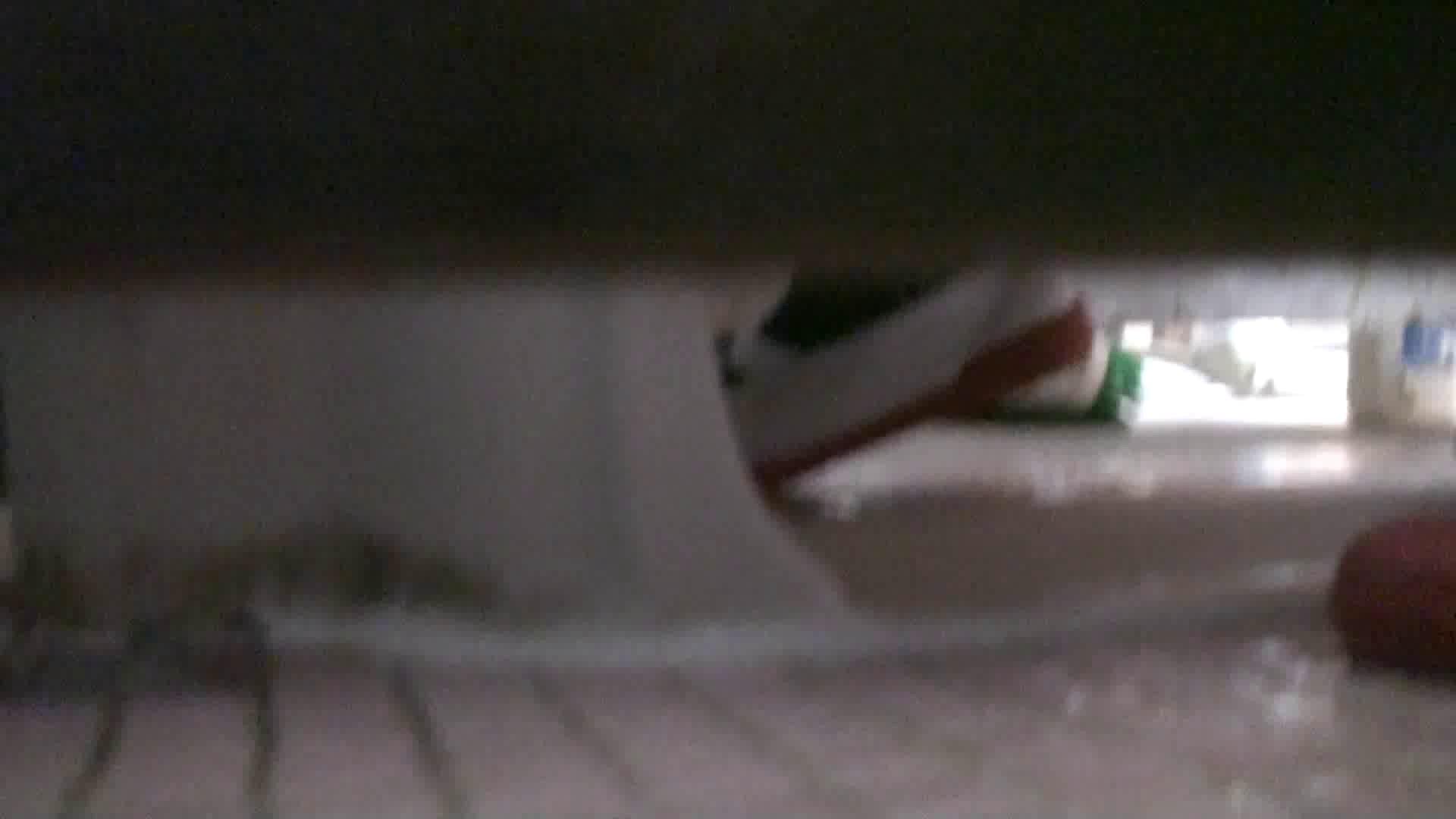 洗面所内潜入!同級生が同級生を盗撮! vol.04 潜入  95PIX 85