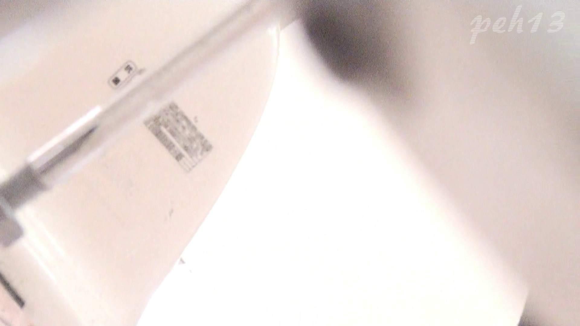 ※100個限定販売 至高下半身盗撮 プレミアム Vol.13 ハイビジョン お姉さん  63PIX 21