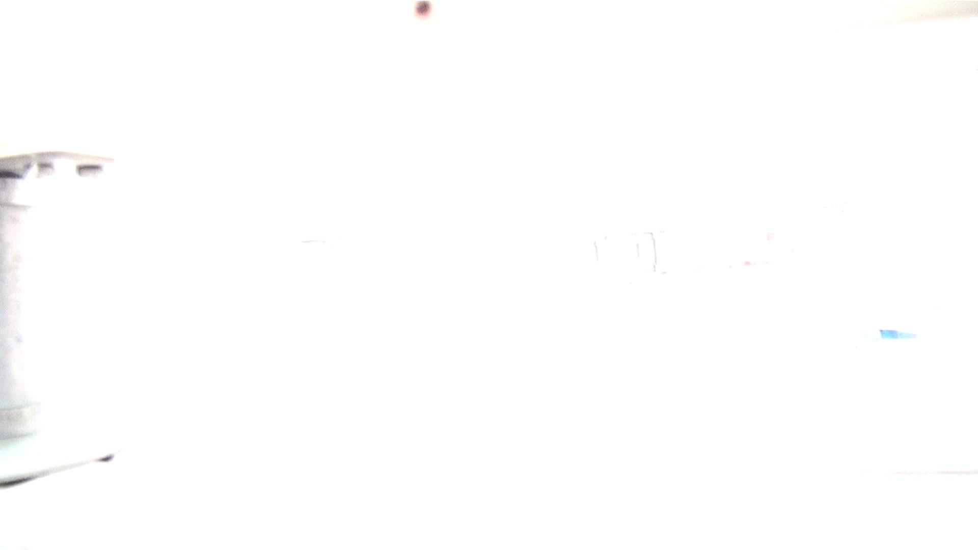 ※100個限定販売 至高下半身盗撮 プレミアム Vol.28 ハイビジョン 洗面所  65PIX 59