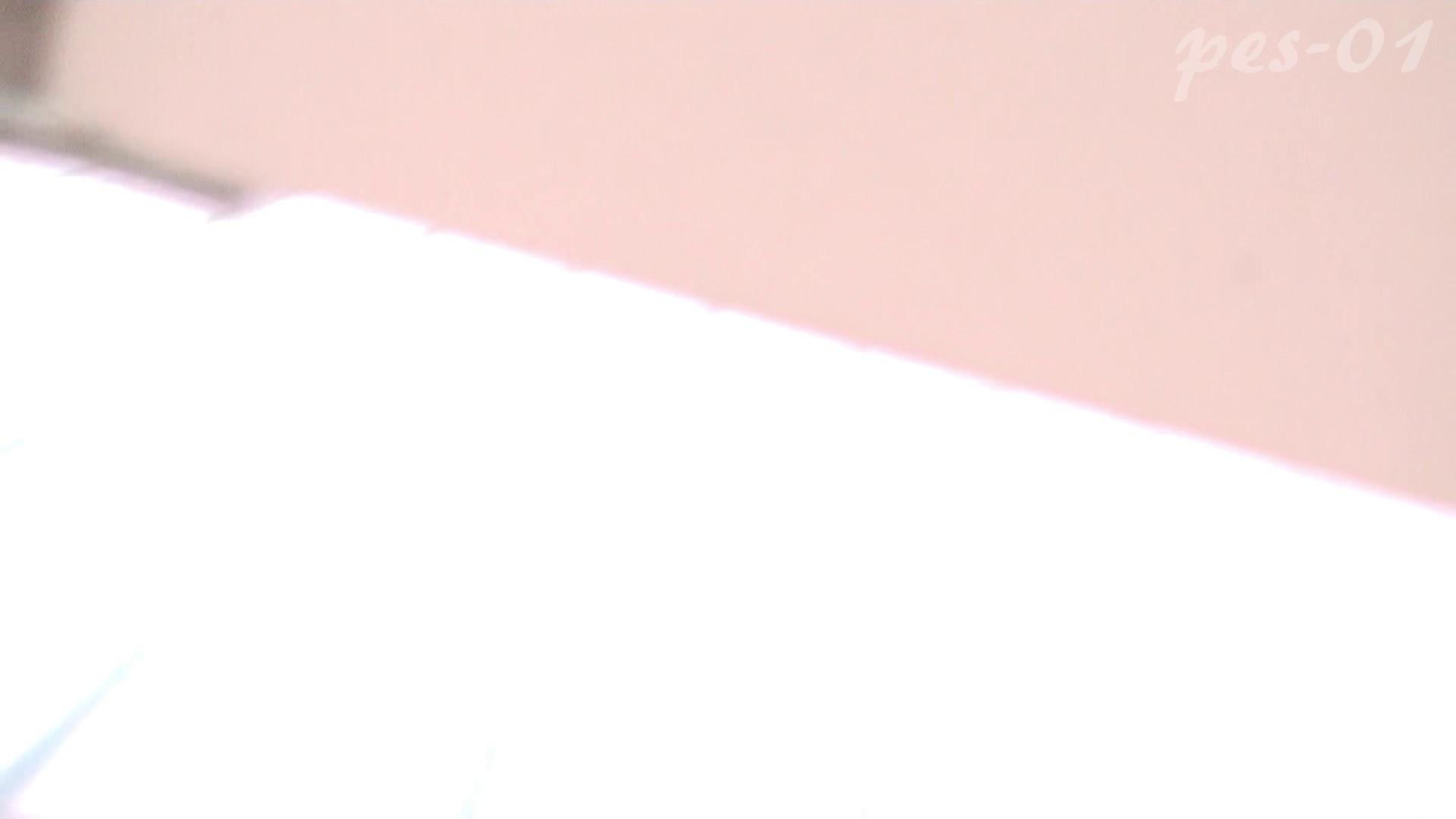※100個限定販売 至高下半身盗撮-プレミアム-【体育館編】VOL.1 体育館  111PIX 100