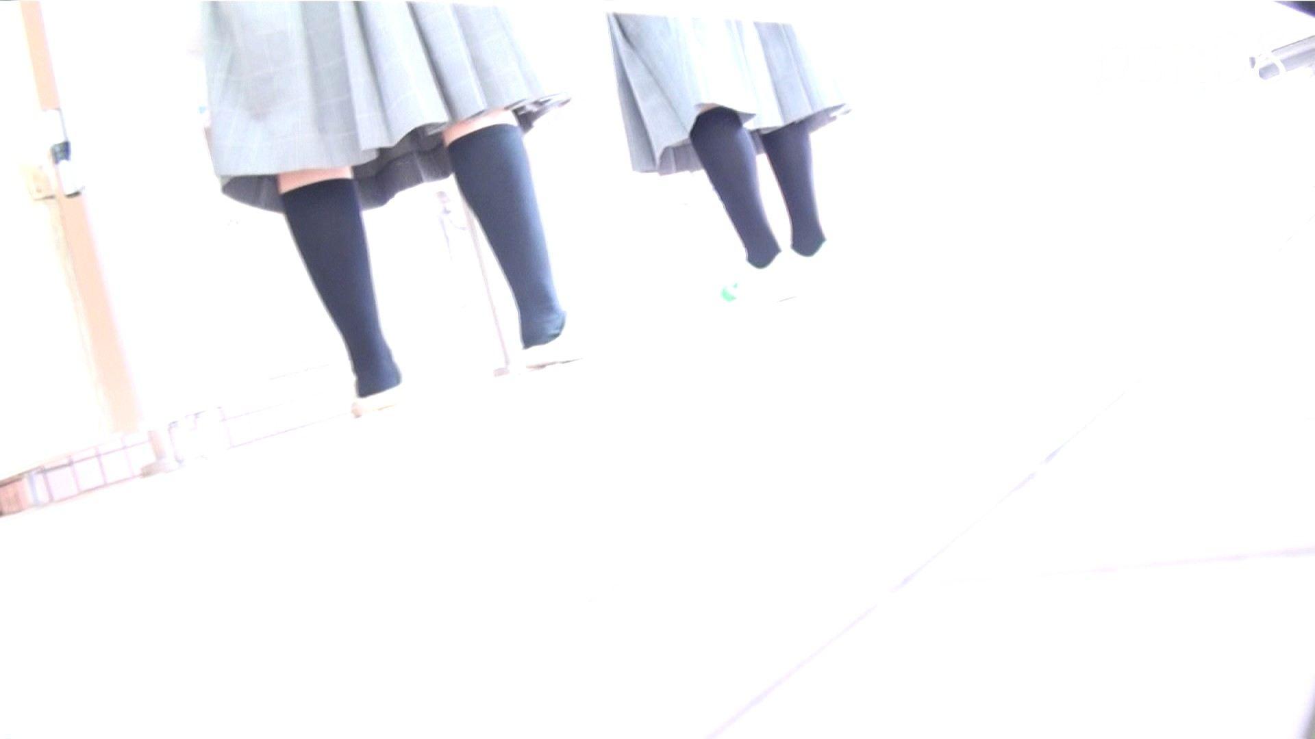 ▲復活限定▲ハイビジョン 盗神伝 Vol.8 洗面所  74PIX 74