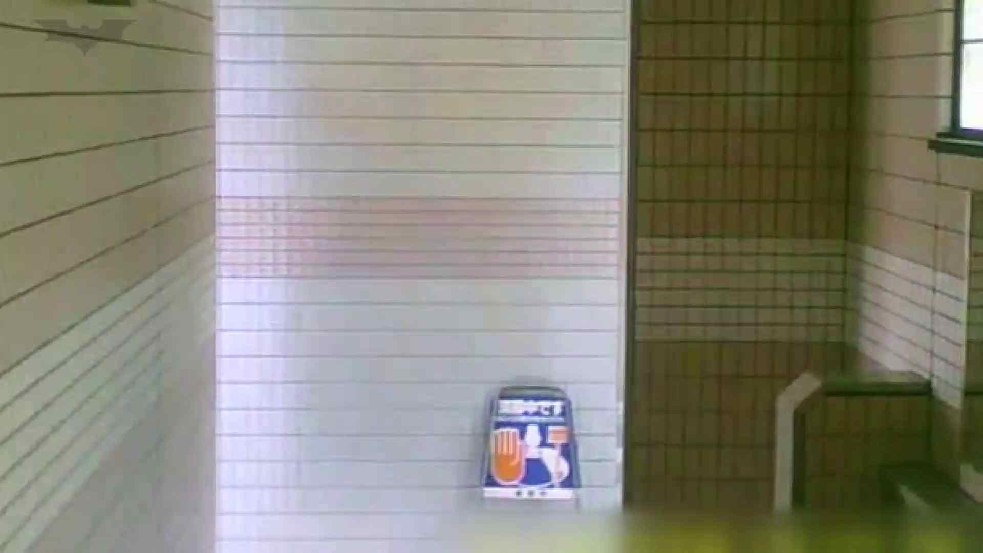 夏の思い出浜辺トイレ盗撮Vol.16 トイレ  56PIX 2