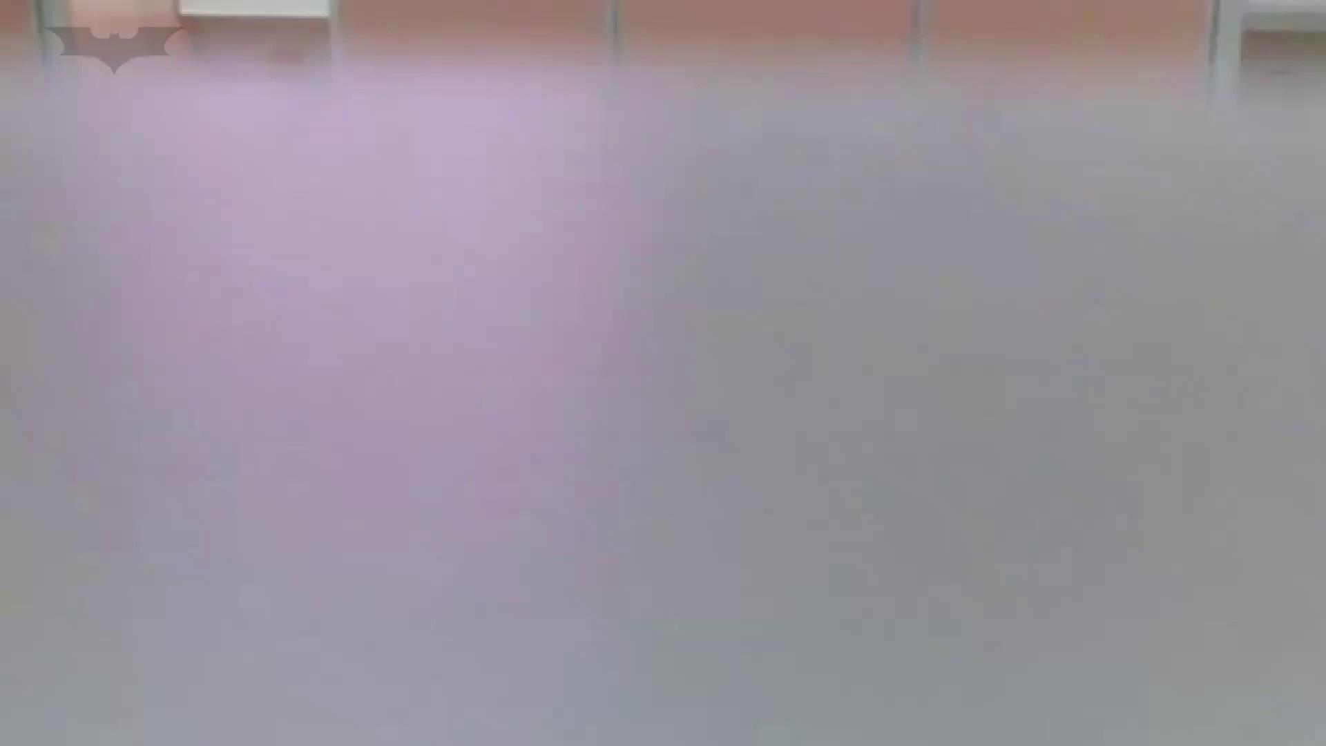 夏の思い出浜辺トイレ盗撮Vol.16 トイレ  56PIX 4