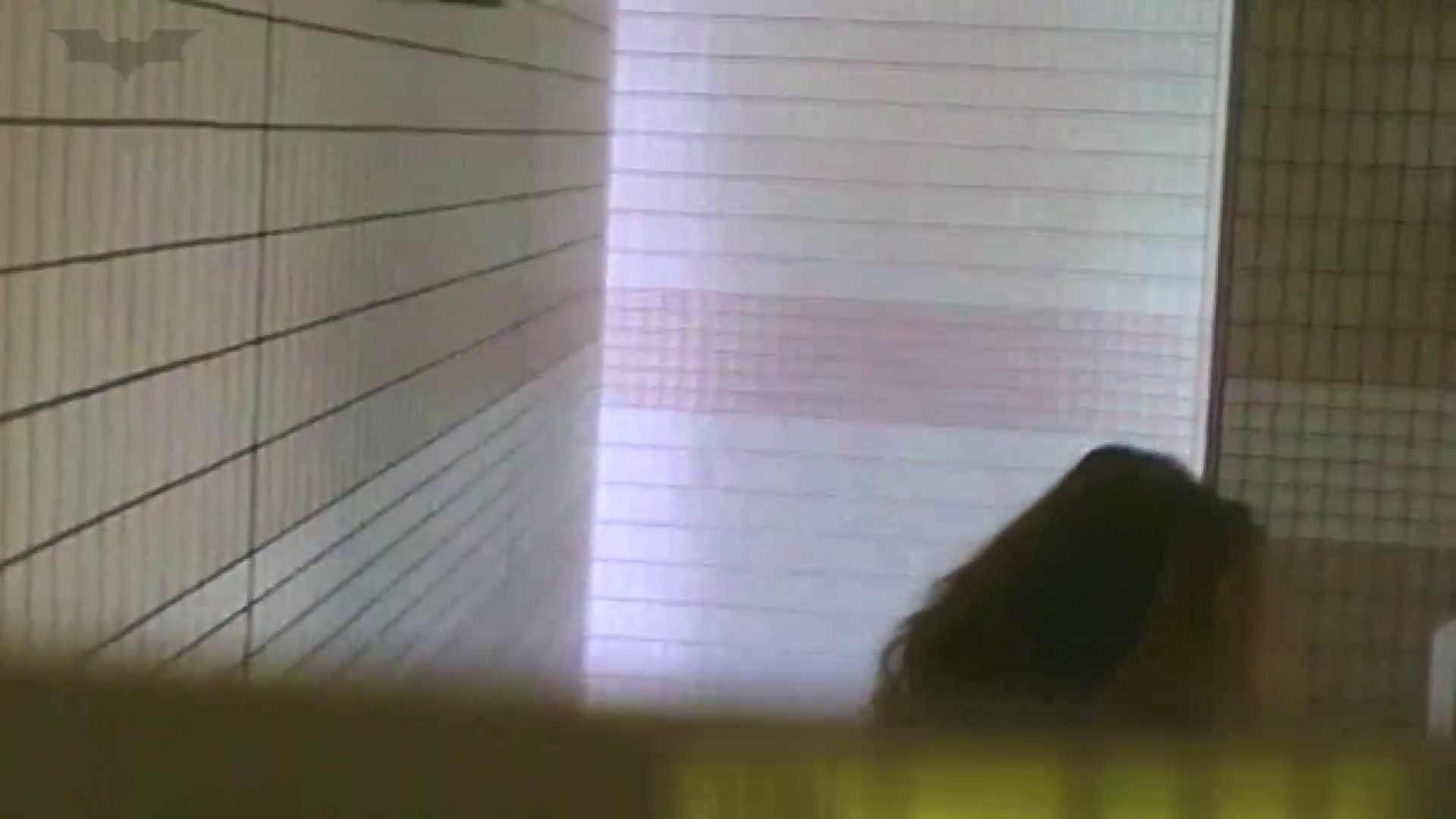 夏の思い出浜辺トイレ盗撮Vol.16 トイレ  56PIX 21