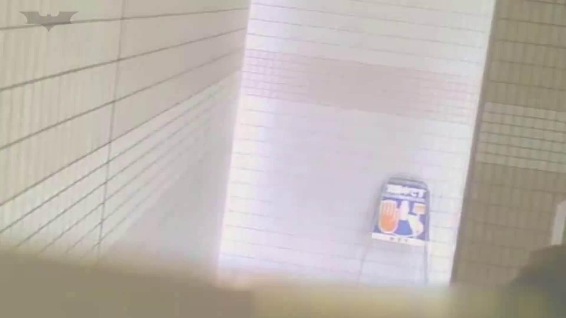 夏の思い出浜辺トイレ盗撮Vol.16 トイレ  56PIX 29