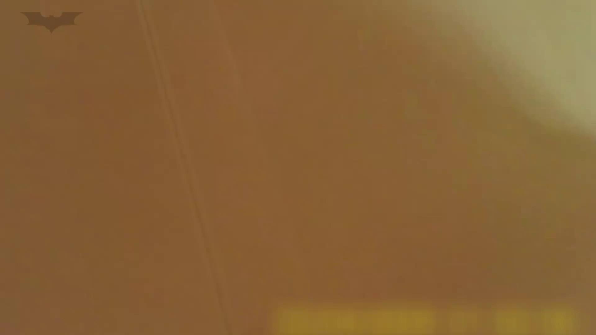 夏の思い出浜辺トイレ盗撮Vol.18 細身  86PIX 56
