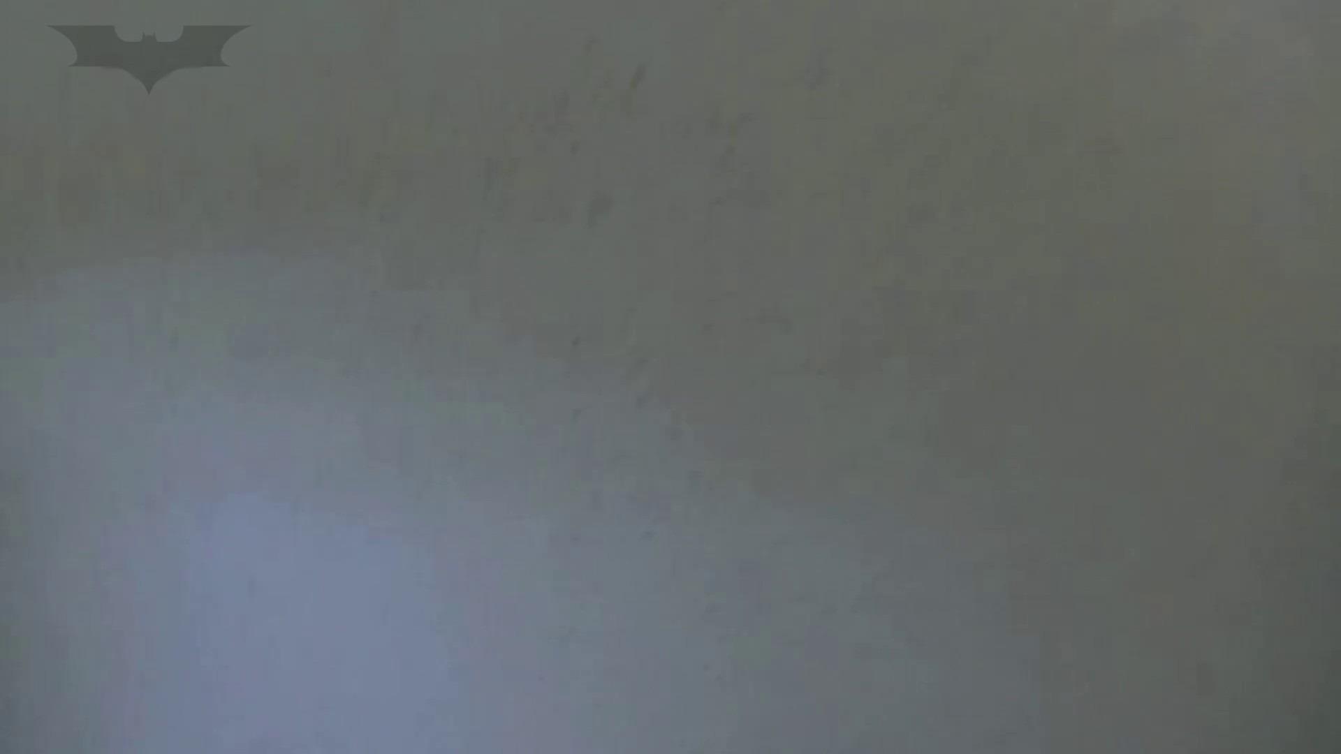 夏の思い出浜辺トイレ盗撮Vol.27 盗撮  69PIX 14