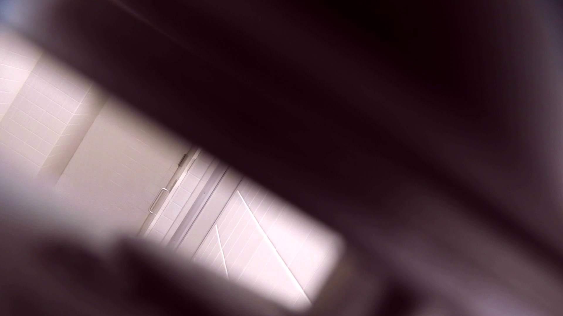 お銀さんの「洗面所突入レポート!!」Nol.13 盛合せ  71PIX 12