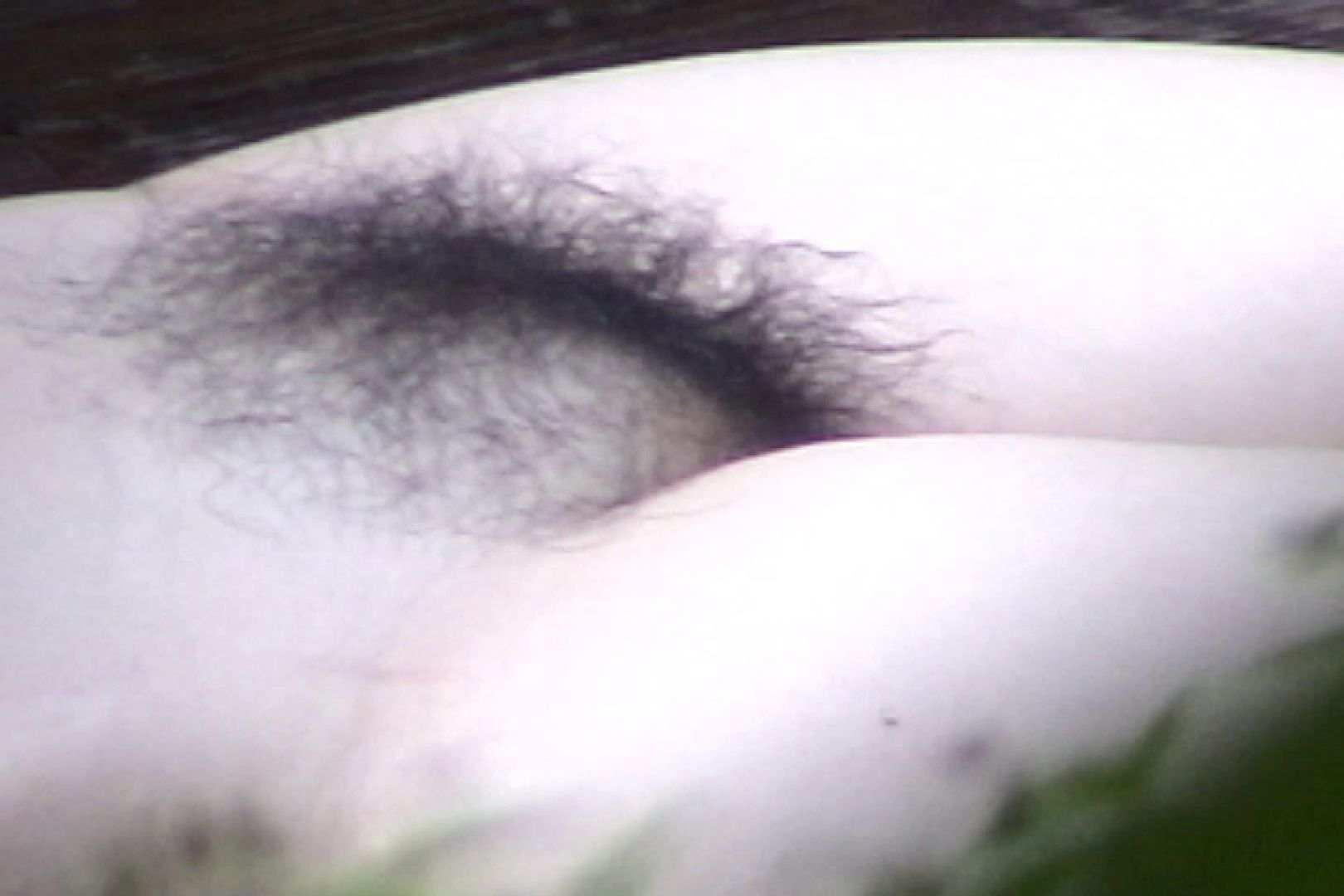 No.11 オトナな女は全裸で裸姿森林浴 美女  61PIX 30