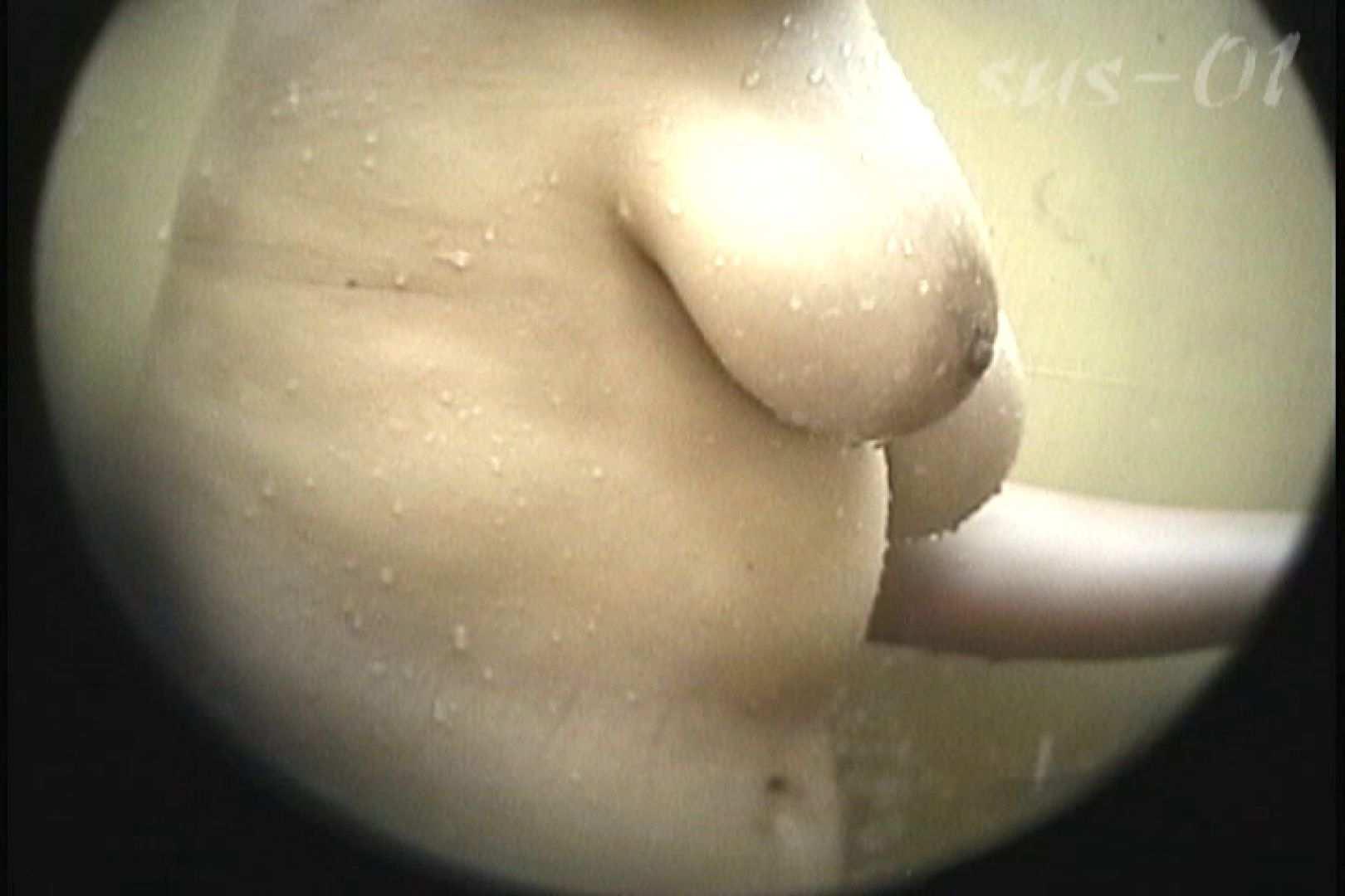 No.2 タレパイちゃんと美乳チャン。乳首の接写が中心。 乙女  88PIX 38