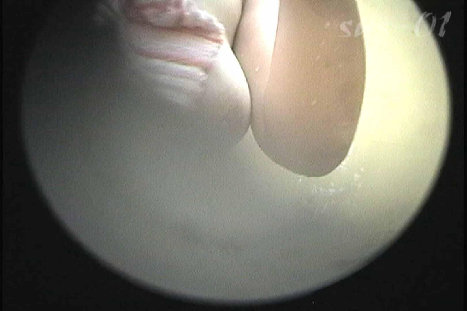 No.2 タレパイちゃんと美乳チャン。乳首の接写が中心。 乙女  88PIX 42