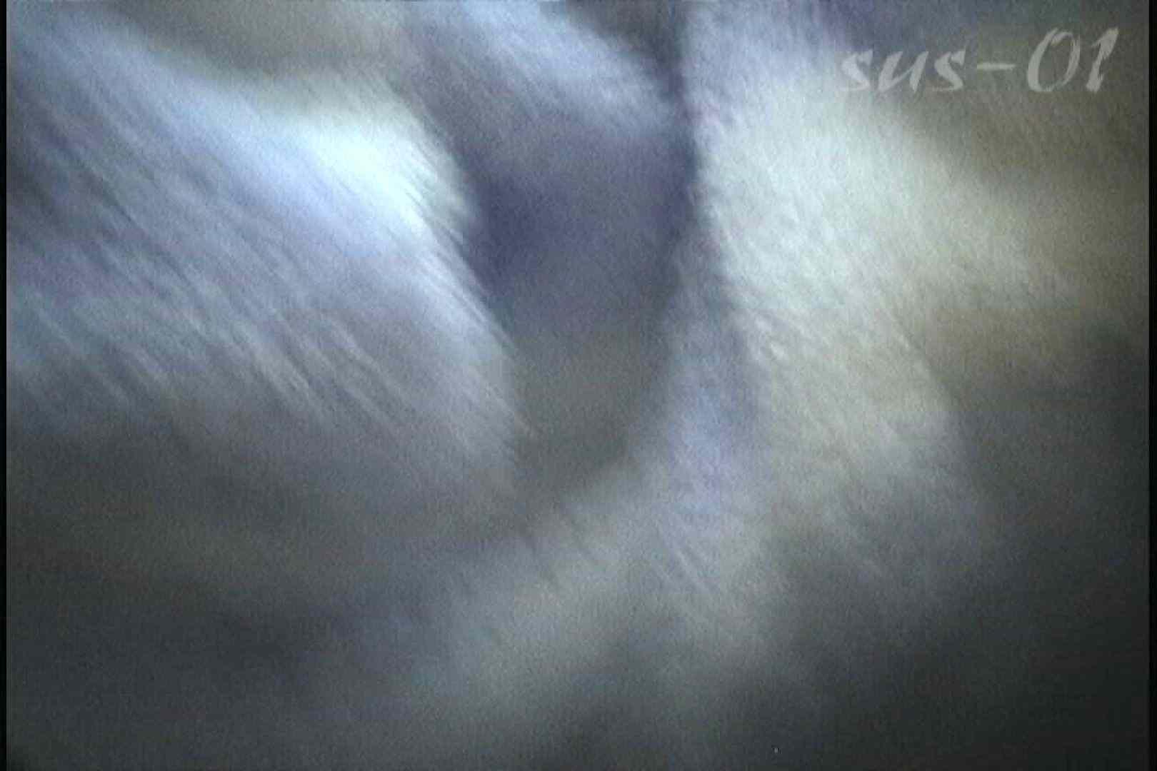 No.2 タレパイちゃんと美乳チャン。乳首の接写が中心。 乙女  88PIX 84