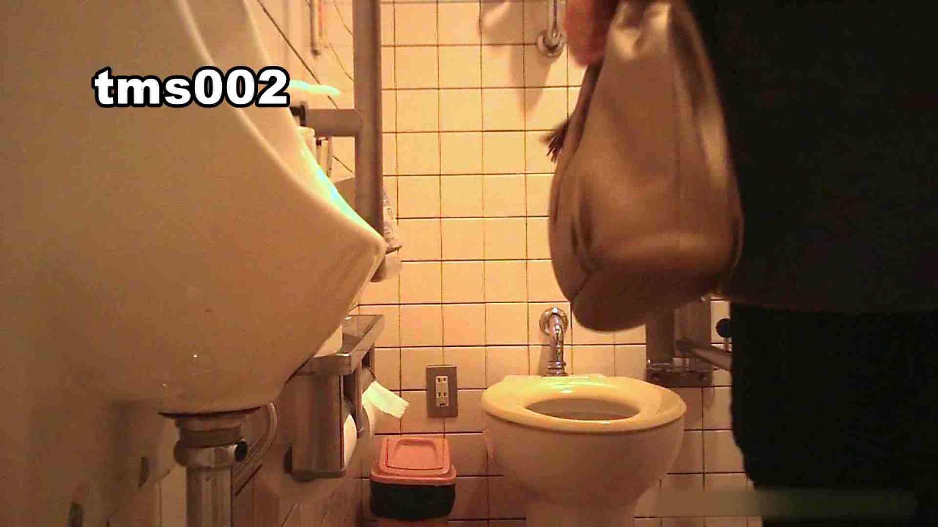 トイメンの割れ目 vol.002 洗面所  55PIX 29