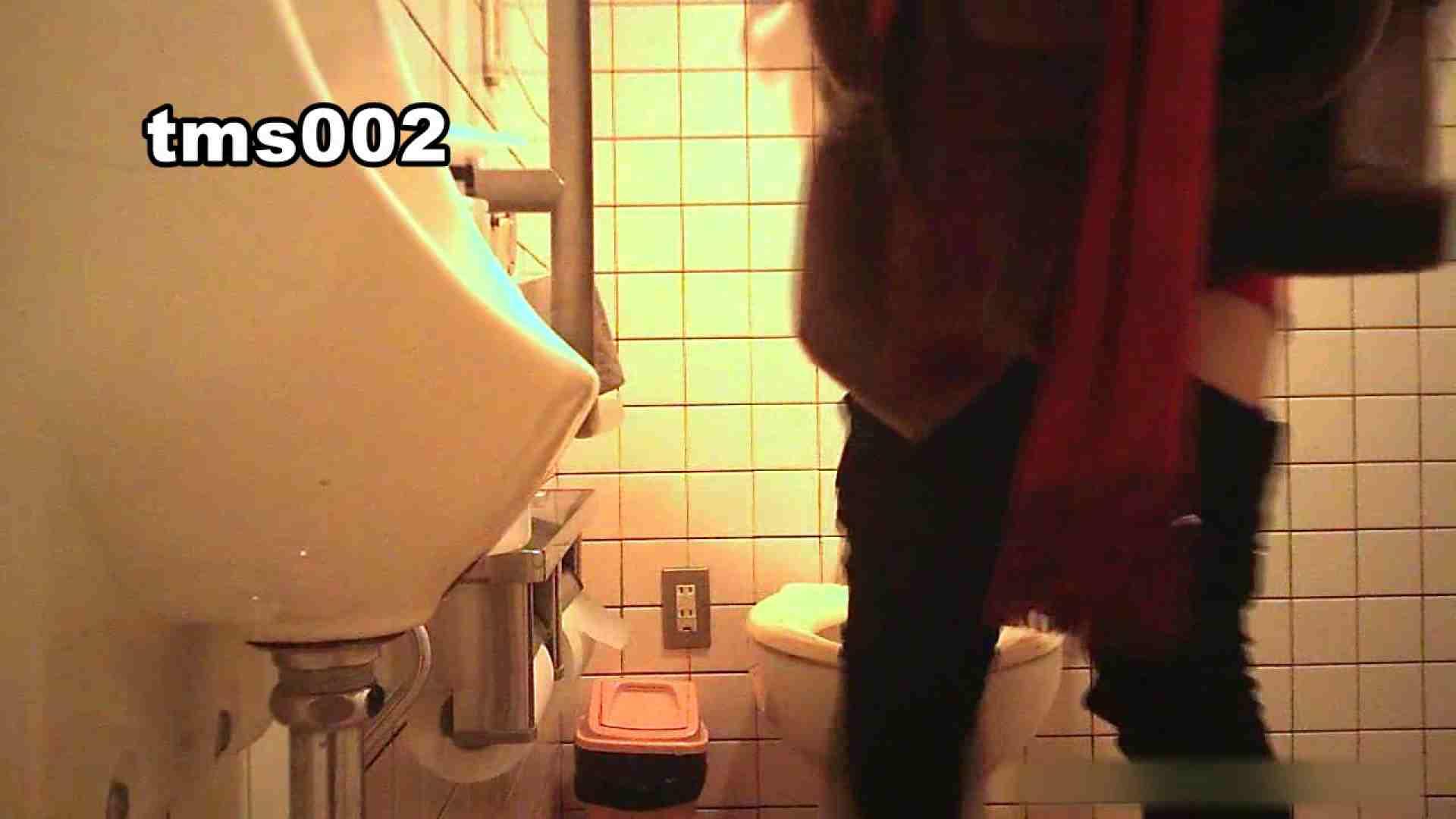 トイメンの割れ目 vol.002 洗面所  55PIX 30