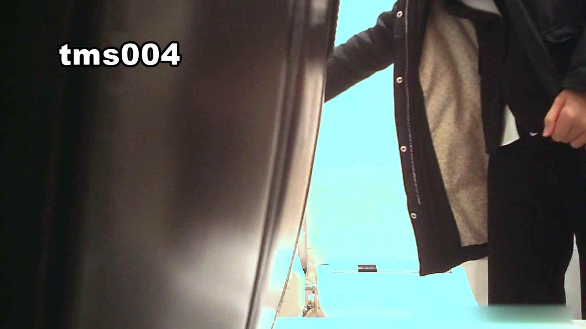 トイメンの割れ目 vol.004 盛合せ  58PIX 46