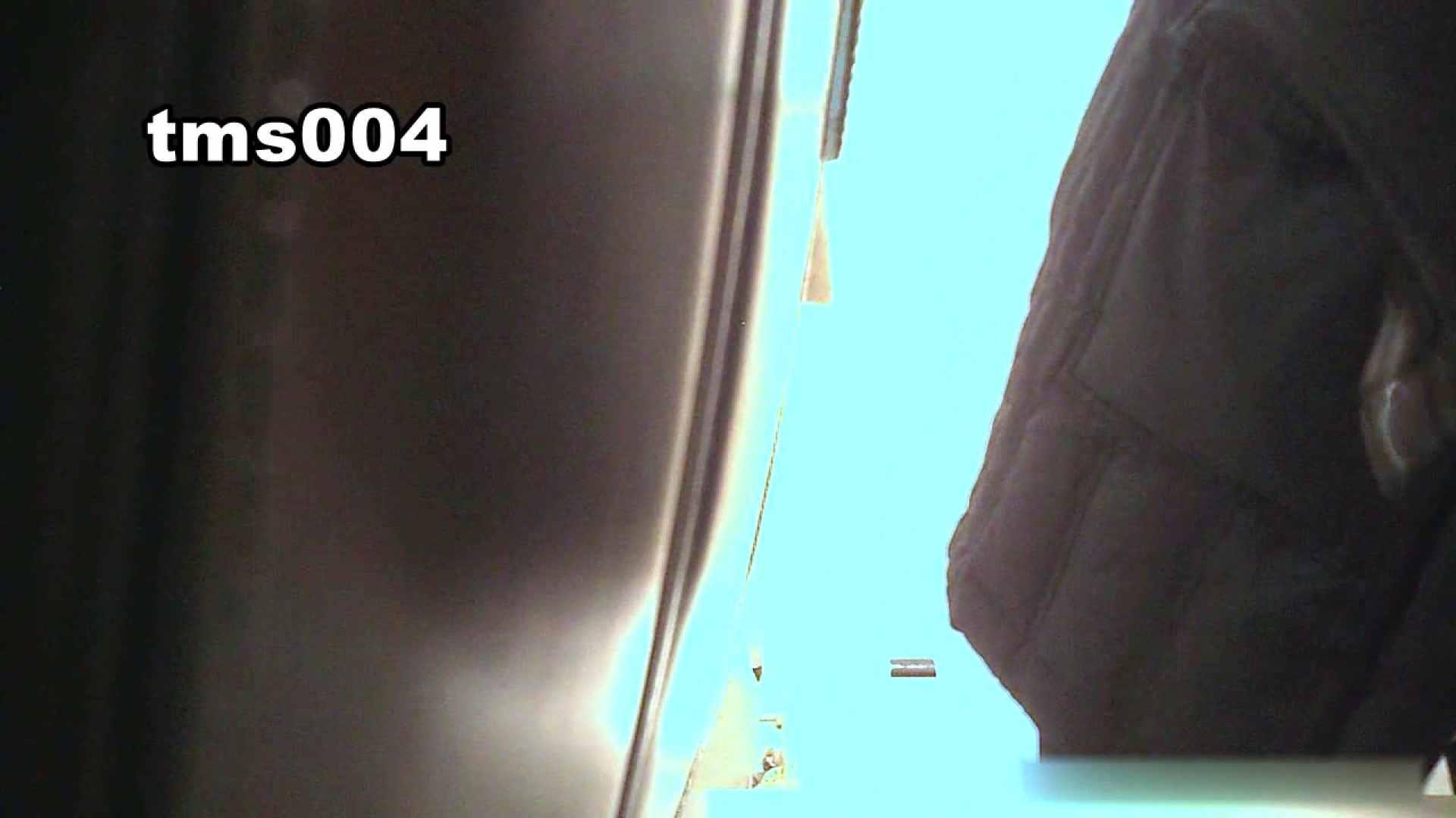 トイメンの割れ目 vol.004 盛合せ  58PIX 51