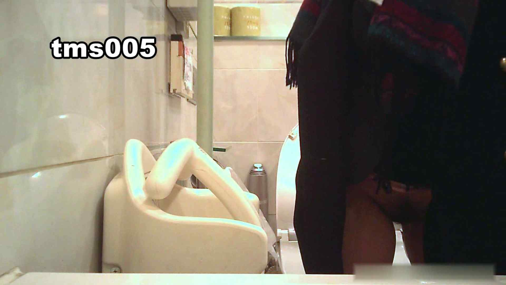 トイメンの割れ目 vol.005 洗面所  73PIX 65