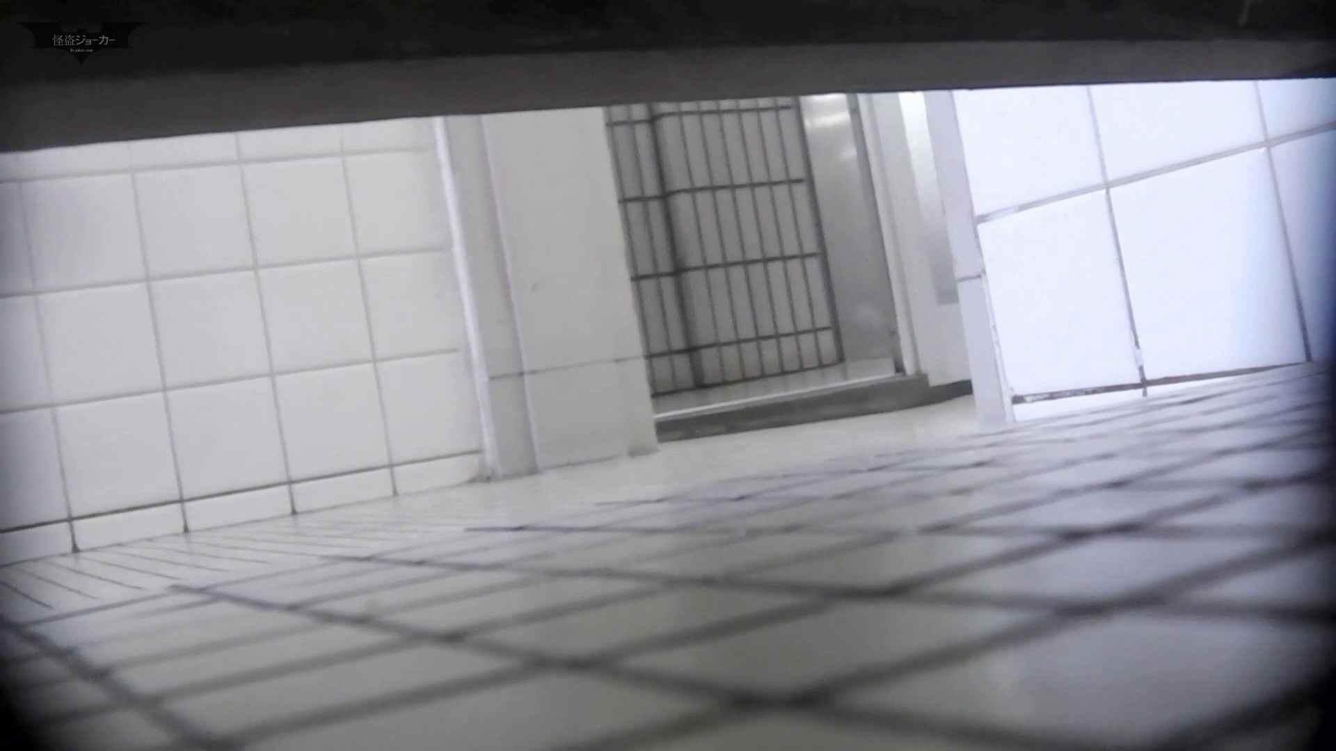 ▲復活限定D▲洗面所特攻隊 vol.62 ピチピチの若さ! In JAPAN お姉さん  66PIX 20