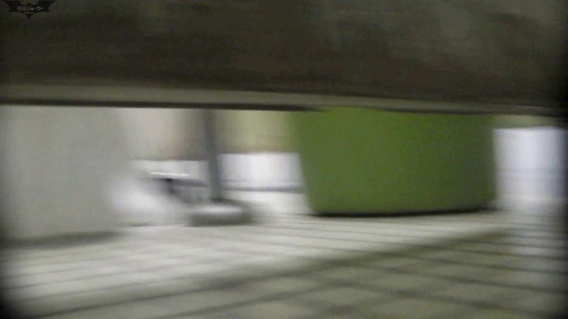 洗面所特攻隊 vol.006 高画質  52PIX 13