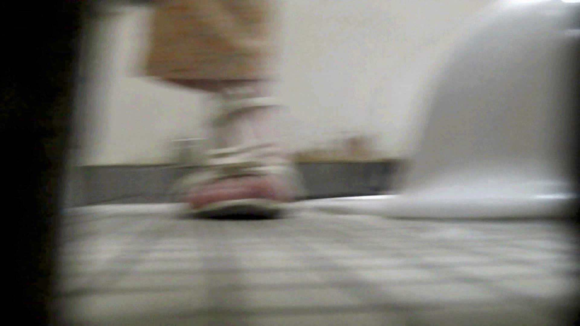 洗面所特攻隊 vol.74 last 2総勢16名激撮【2015・29位】 お姉さん  95PIX 20