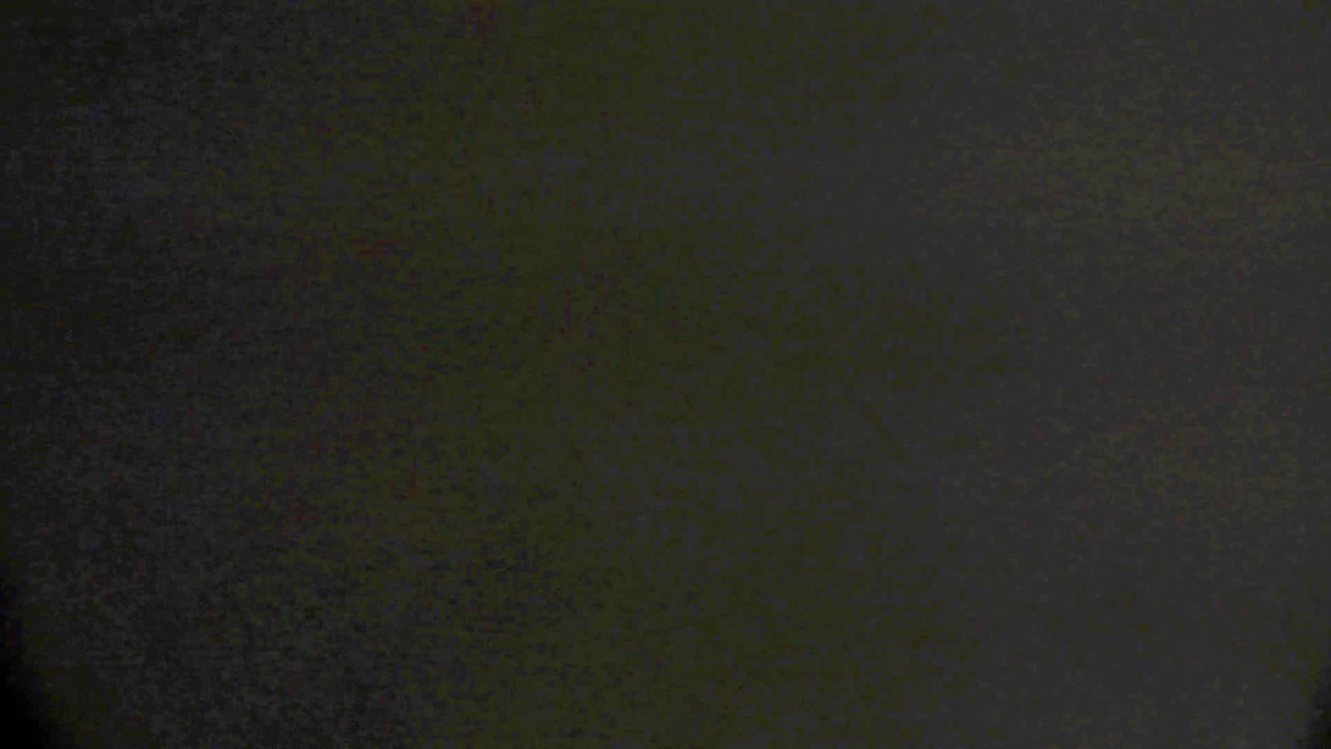 洗面所特攻隊 vol.74 last 2総勢16名激撮【2015・29位】 お姉さん  95PIX 28