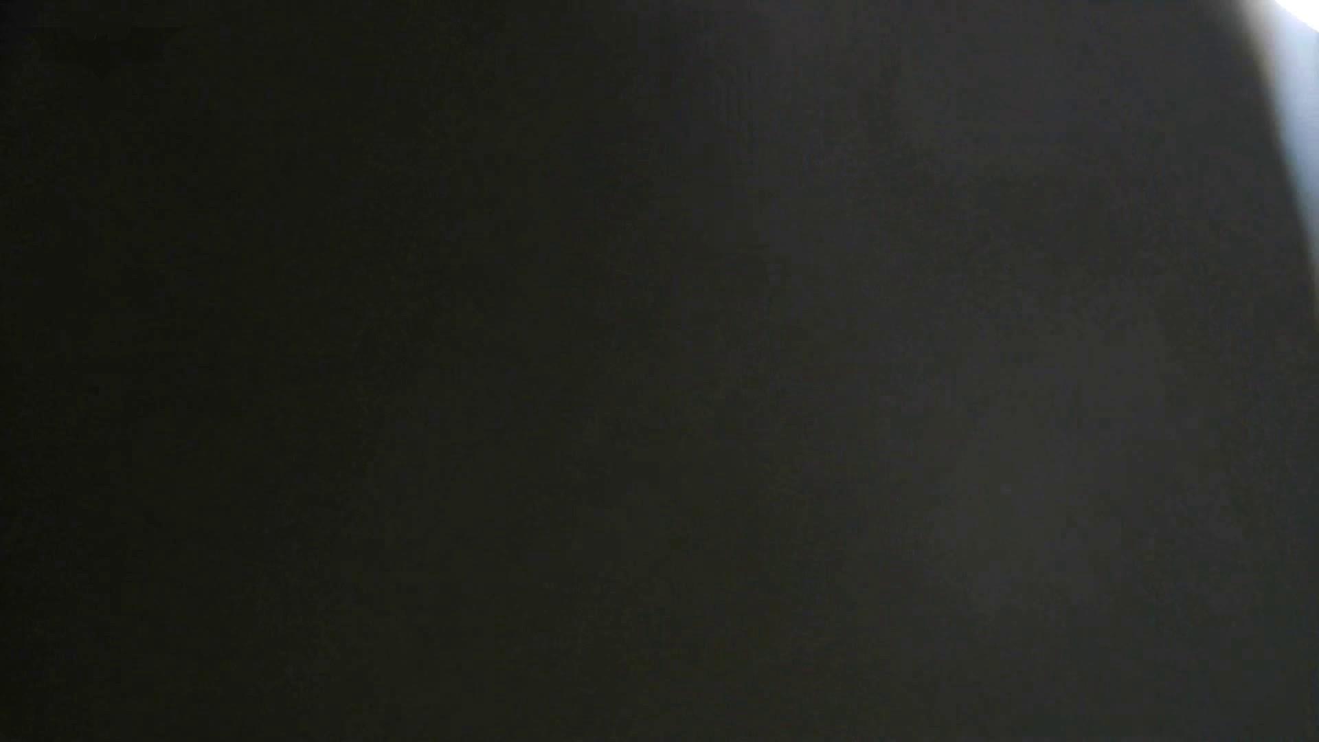 洗面所特攻隊 vol.74 last 2総勢16名激撮【2015・29位】 お姉さん  95PIX 44