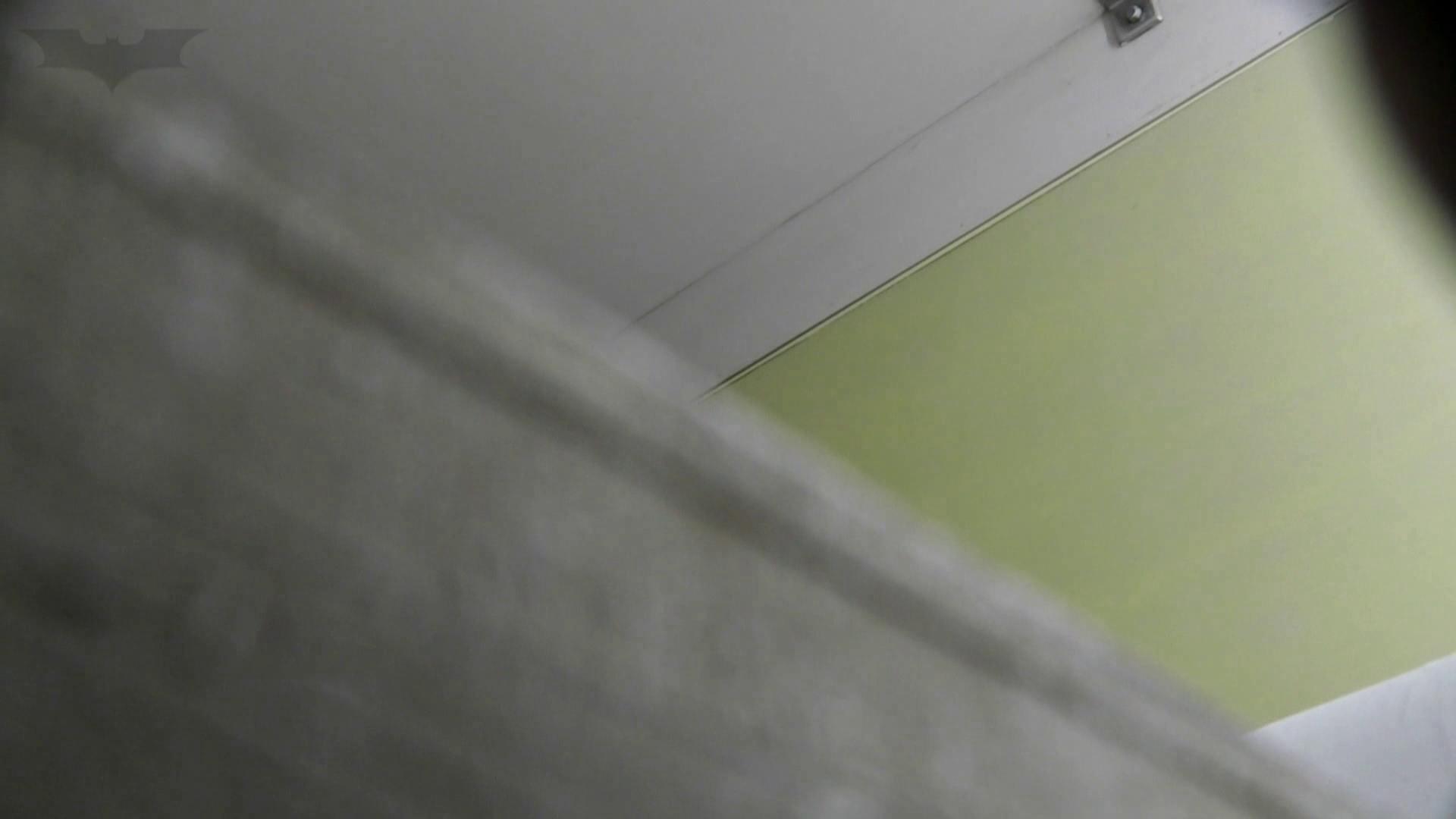 洗面所特攻隊 vol.74 last 2総勢16名激撮【2015・29位】 お姉さん  95PIX 48