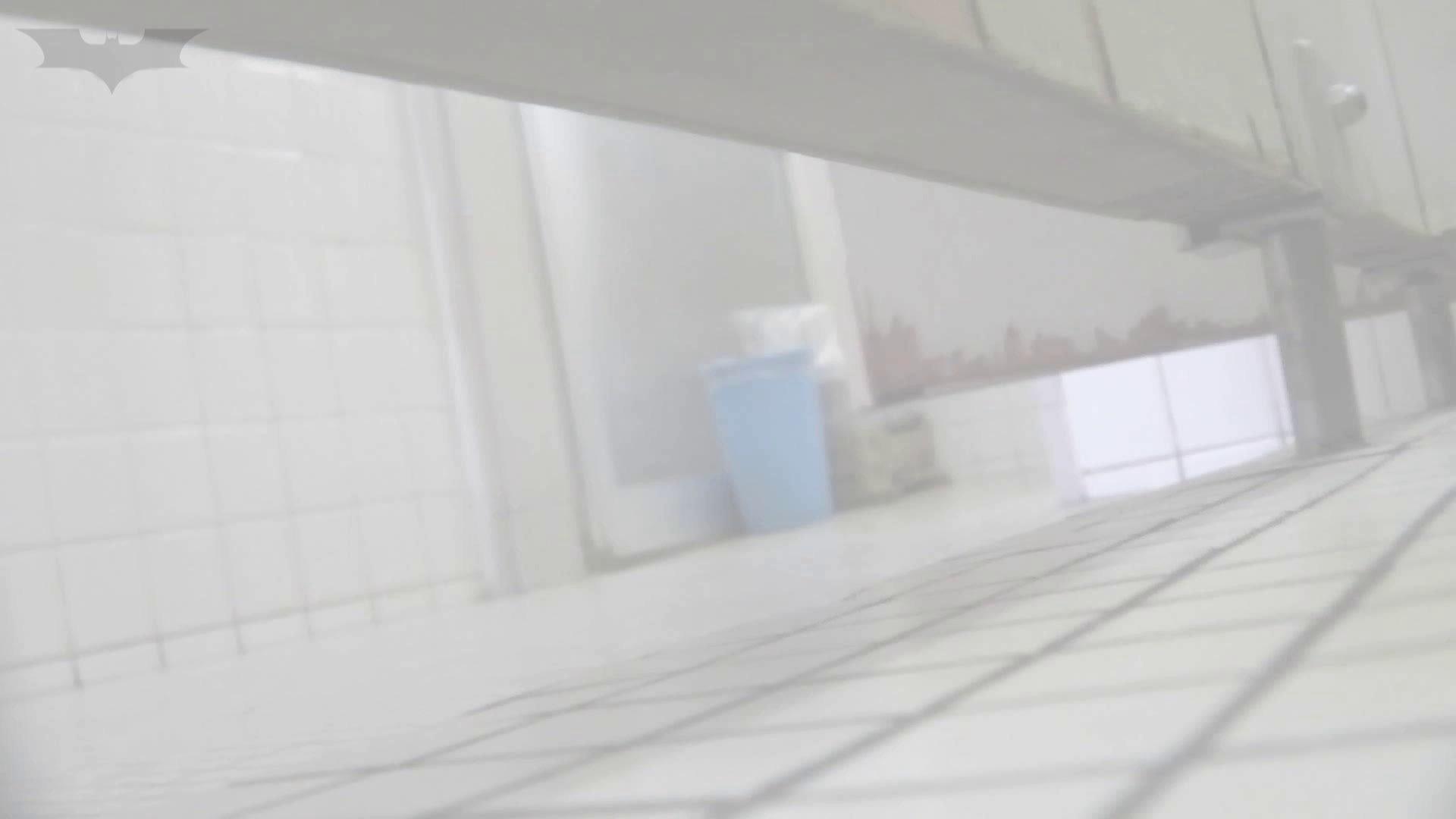 洗面所特攻隊 vol.74 last 2総勢16名激撮【2015・29位】 お姉さん  95PIX 50