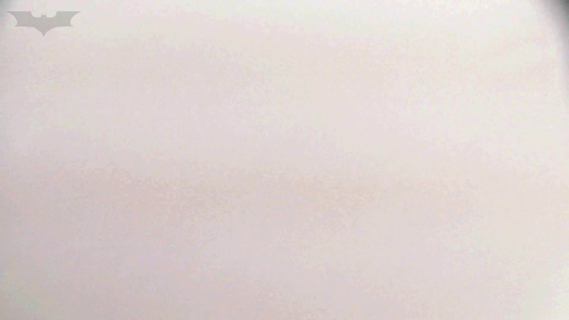 洗面所特攻隊 vol.74 last 2総勢16名激撮【2015・29位】 お姉さん  95PIX 51
