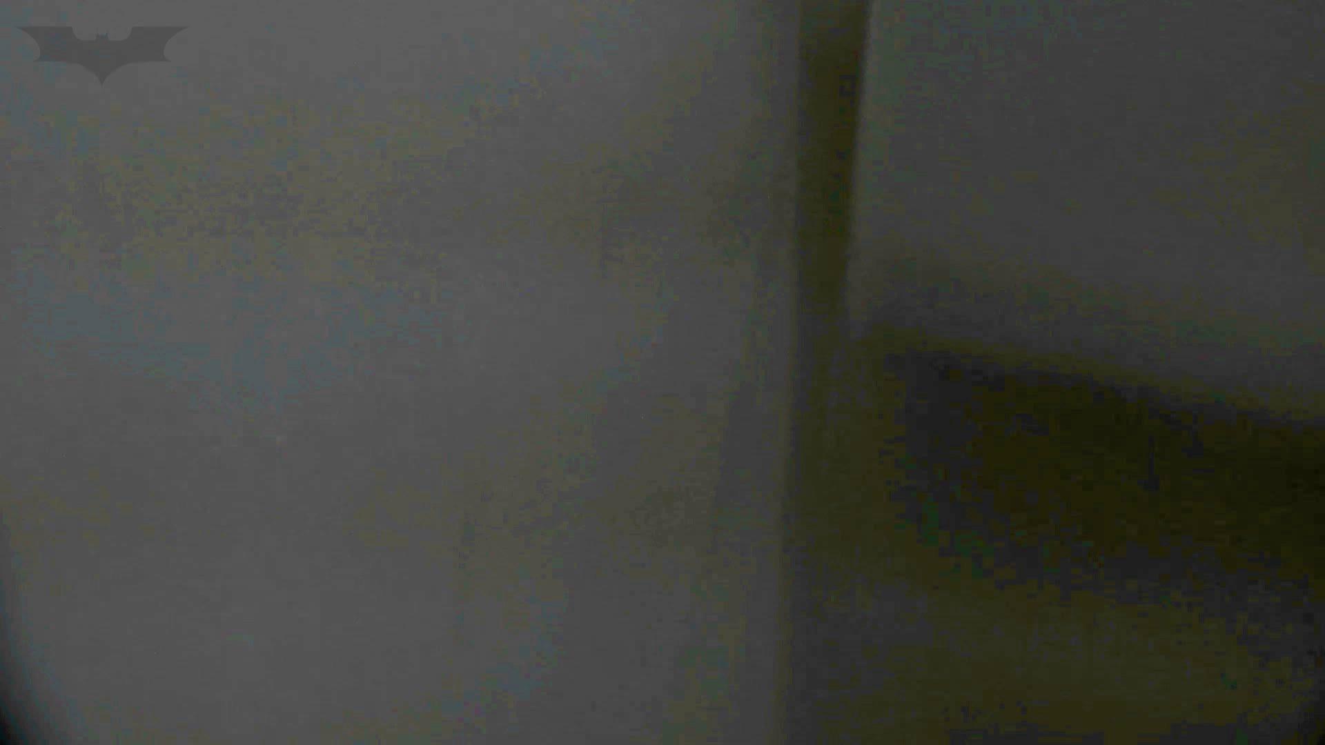 洗面所特攻隊 vol.74 last 2総勢16名激撮【2015・29位】 お姉さん  95PIX 73