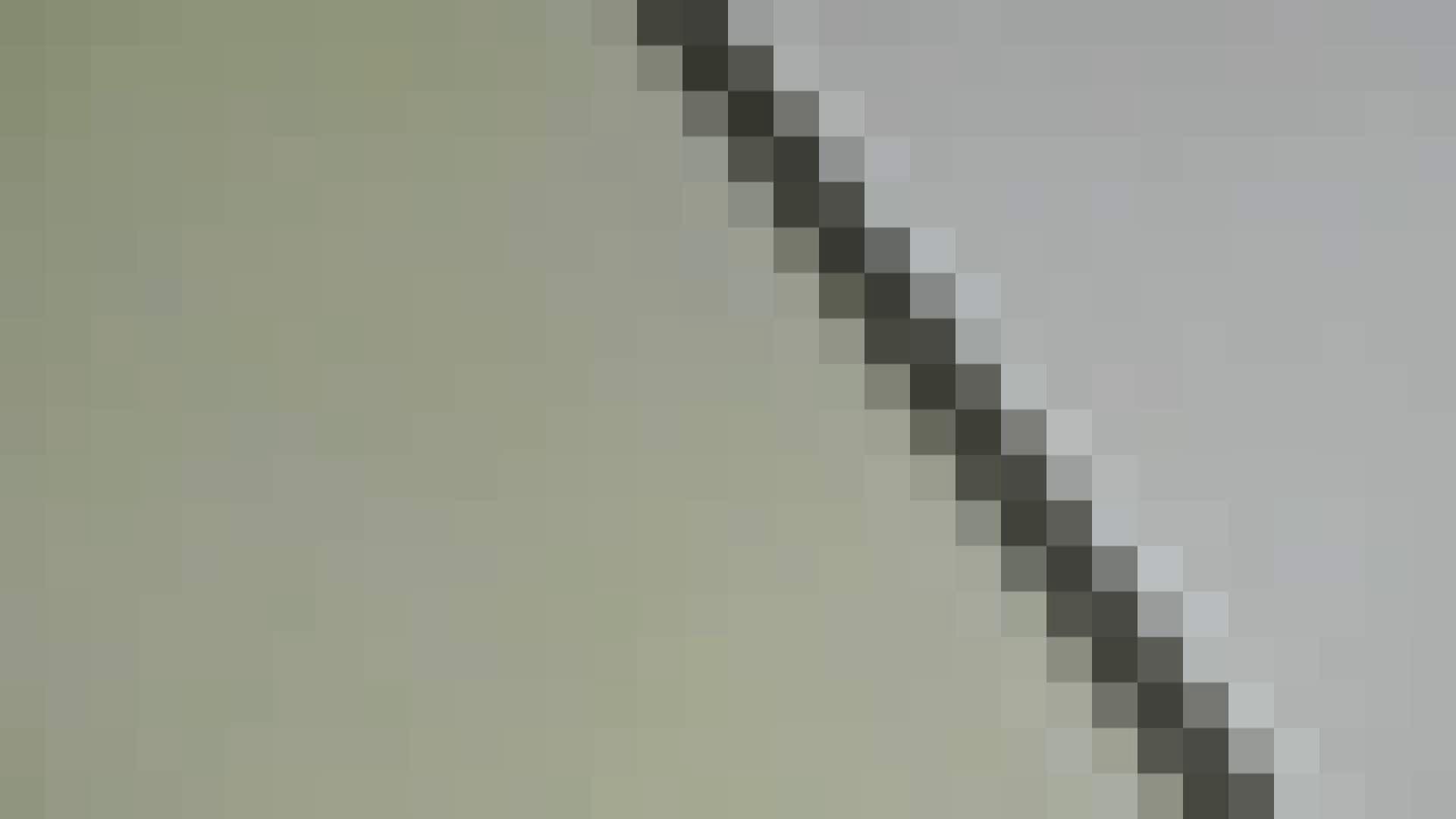 洗面所特攻隊vol.013 高画質  108PIX 98