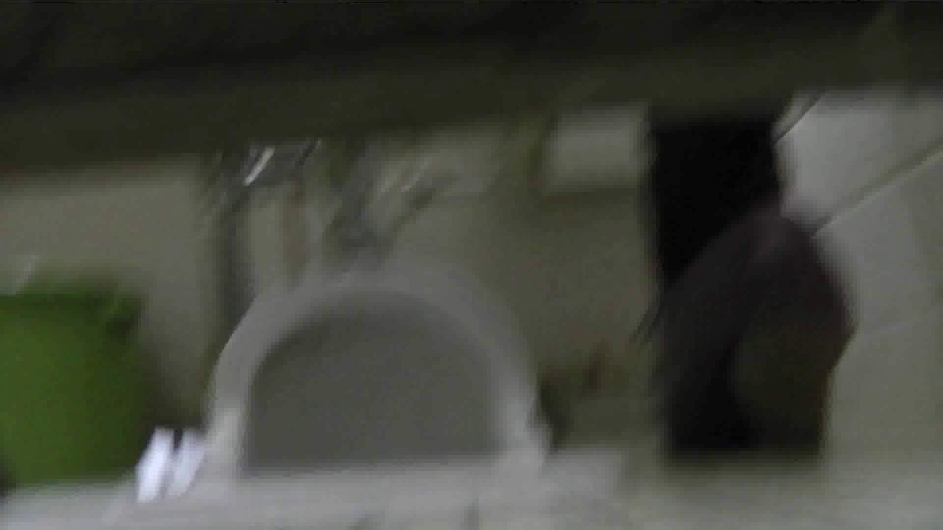 【美しき個室な世界】 vol.017 (゜∀゜) 洗面所  71PIX 1