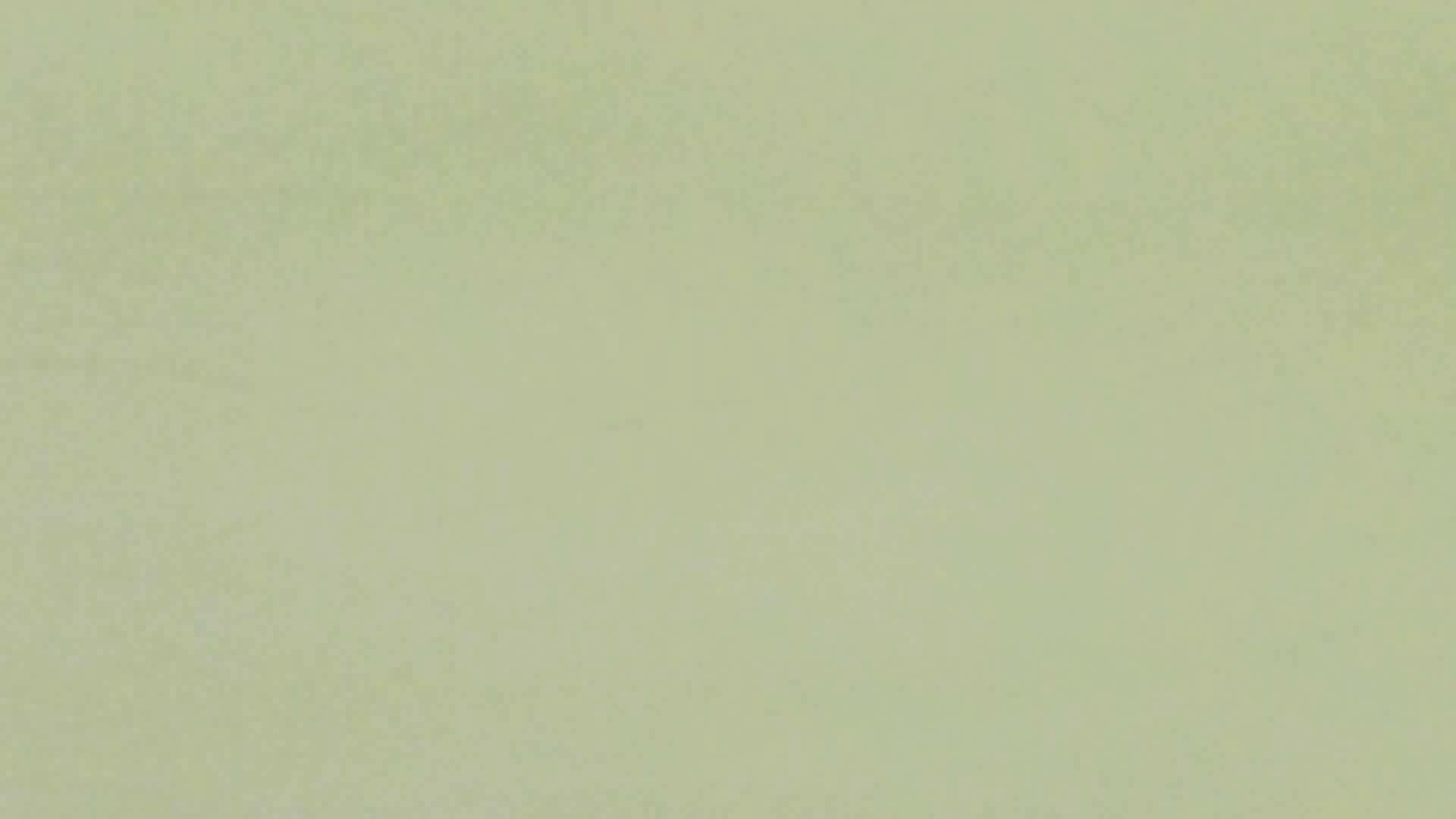 【美しき個室な世界】 vol.017 (゜∀゜) 洗面所  71PIX 34