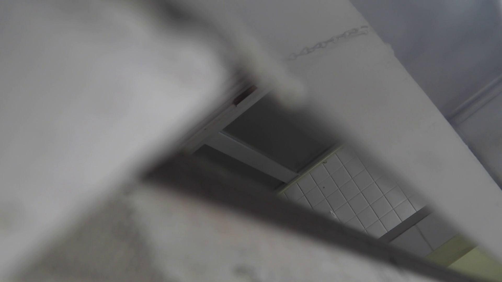 洗面所特攻隊 vol.020 びにょ~ん お姉さん  74PIX 14