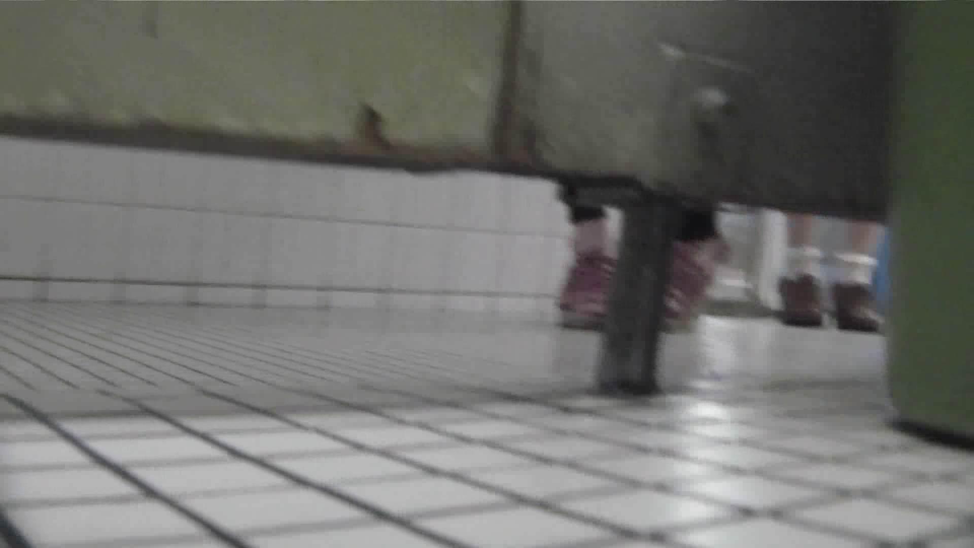 洗面所特攻隊 vol.020 びにょ~ん お姉さん  74PIX 28