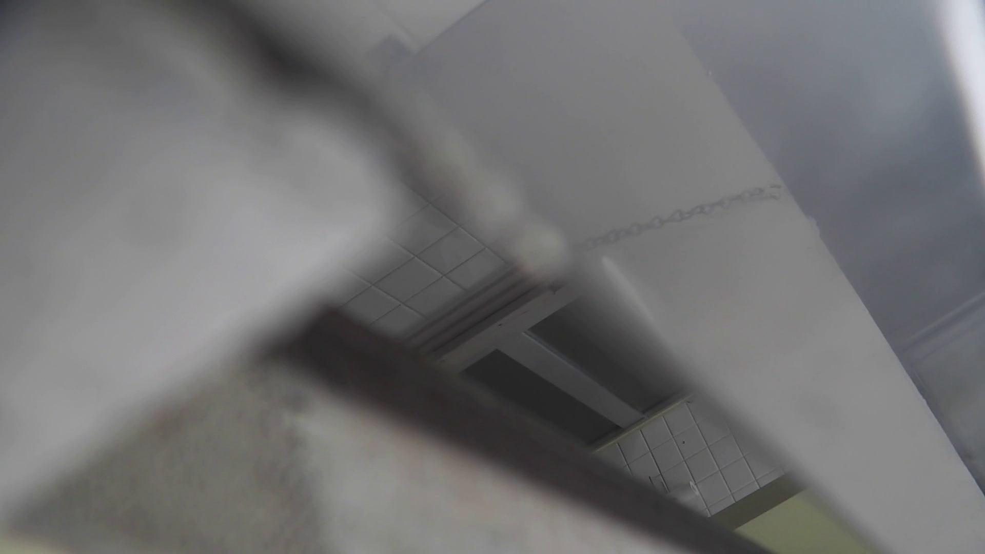 洗面所特攻隊 vol.020 びにょ~ん お姉さん  74PIX 54