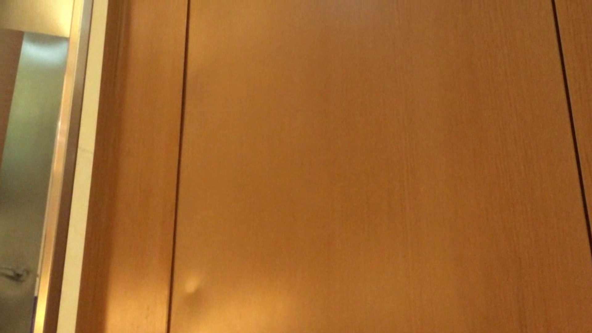 隣国化粧室下から御免!! No.05 美女  69PIX 14