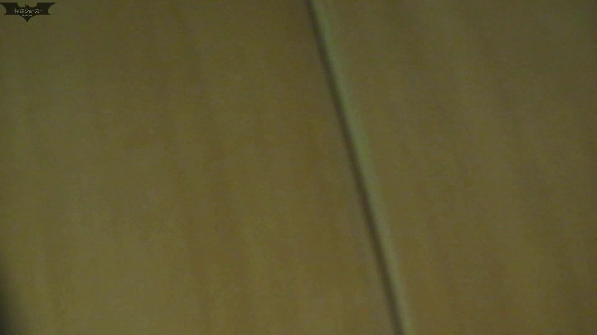 和式洋式七変化 Vol.28 綺麗に撮れました。(ー_ー)!! お姉さん  71PIX 12
