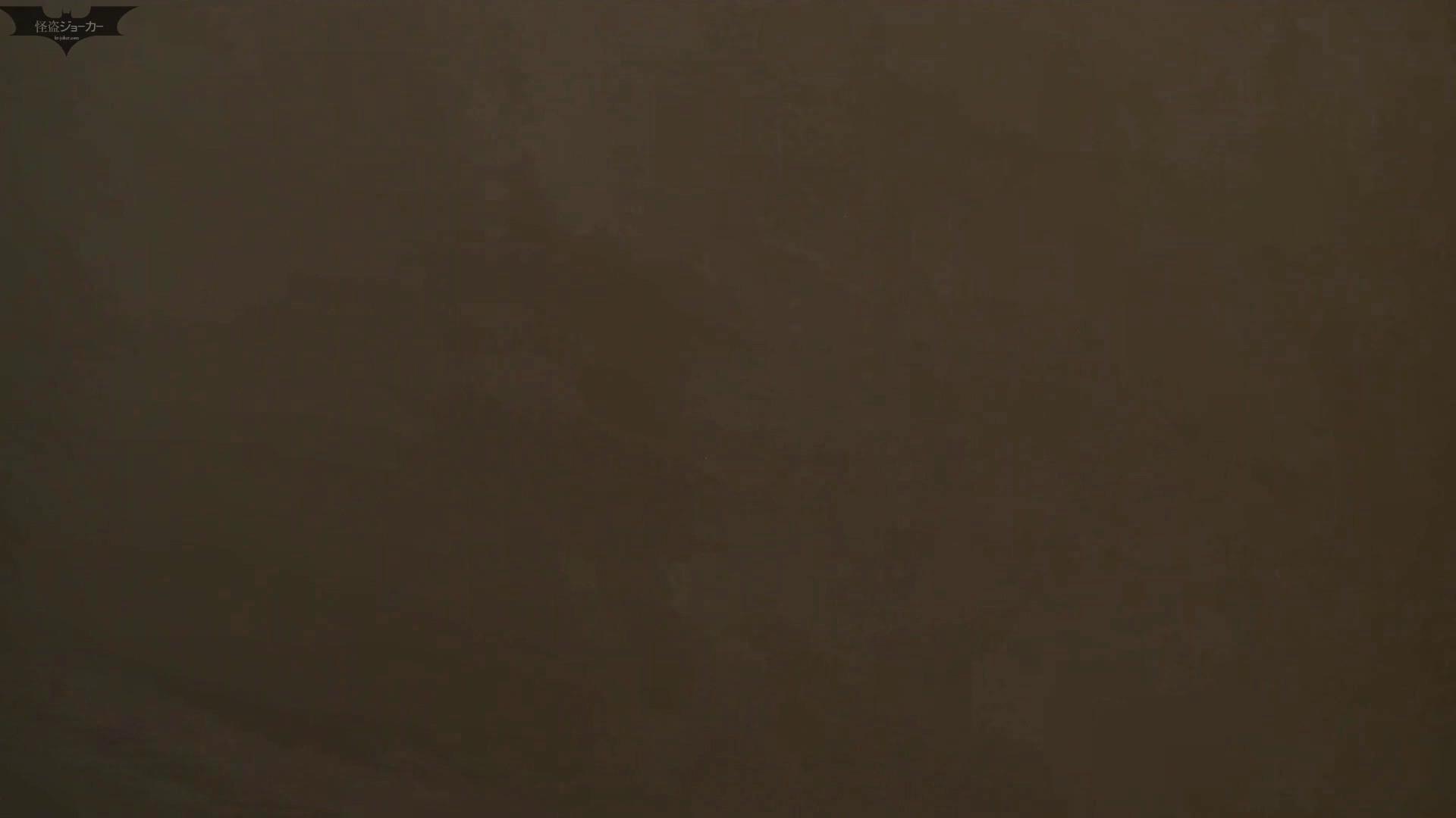 和式洋式七変化 Vol.28 綺麗に撮れました。(ー_ー)!! お姉さん  71PIX 18