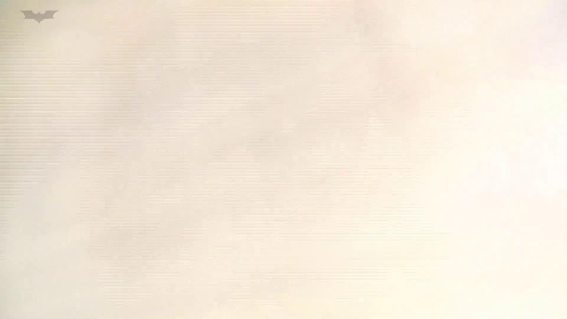 和式洋式七変化 Vol.31 洋式だけど丸見えですっ!! 丸見え  73PIX 11