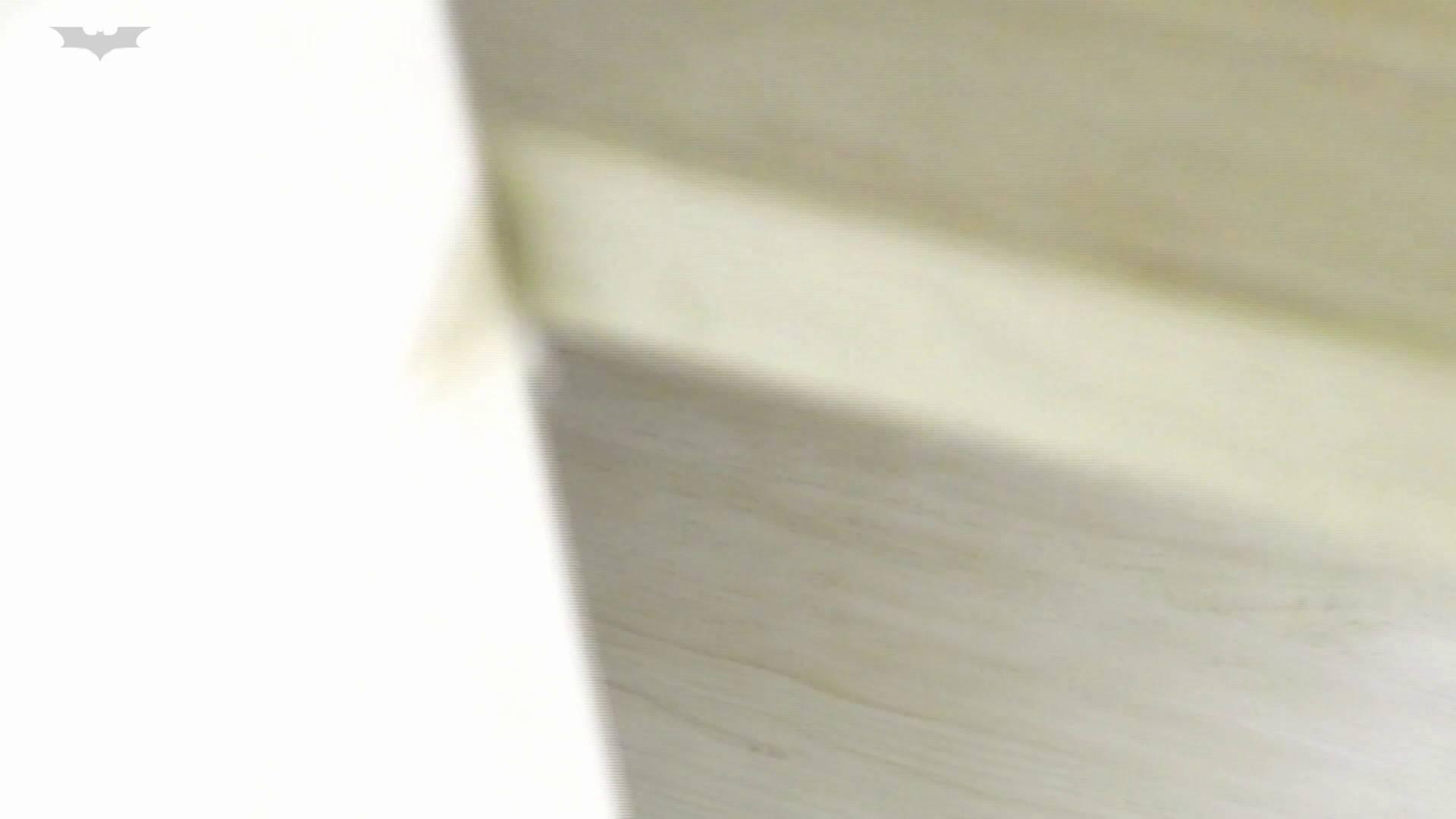 和式洋式七変化 Vol.31 洋式だけど丸見えですっ!! 丸見え  73PIX 22