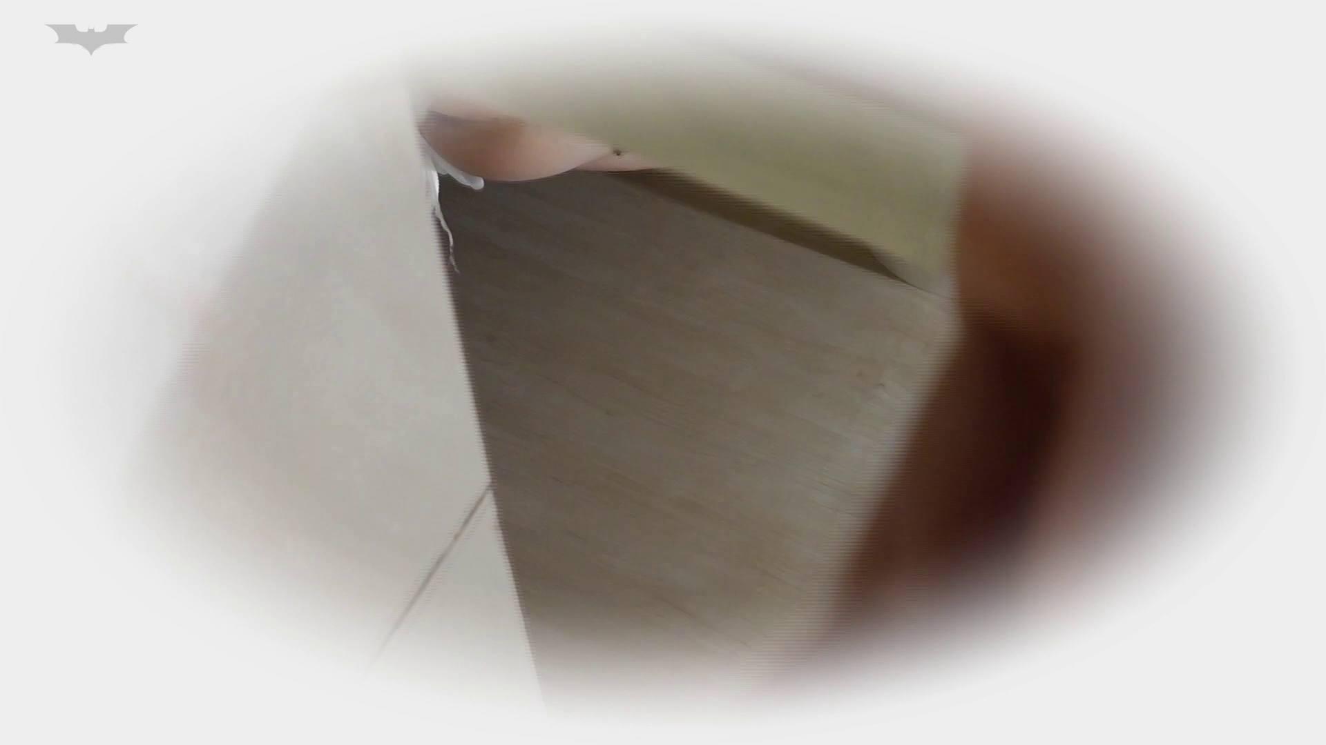 和式洋式七変化 Vol.31 洋式だけど丸見えですっ!! 丸見え  73PIX 62