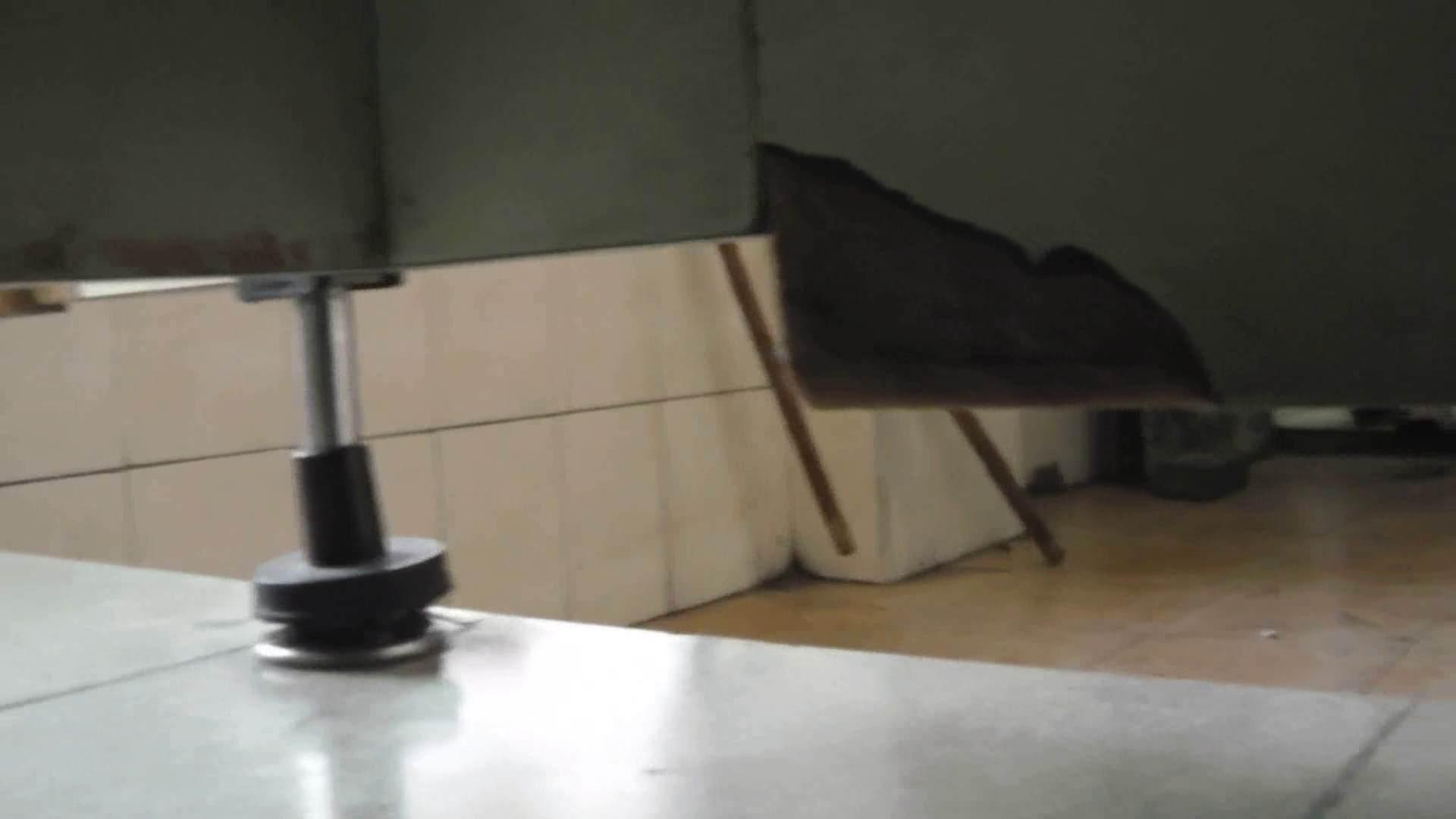 世界の射窓から ステーション編 vol.17厦大女厕偷拍 qianp 洗面所  87PIX 17