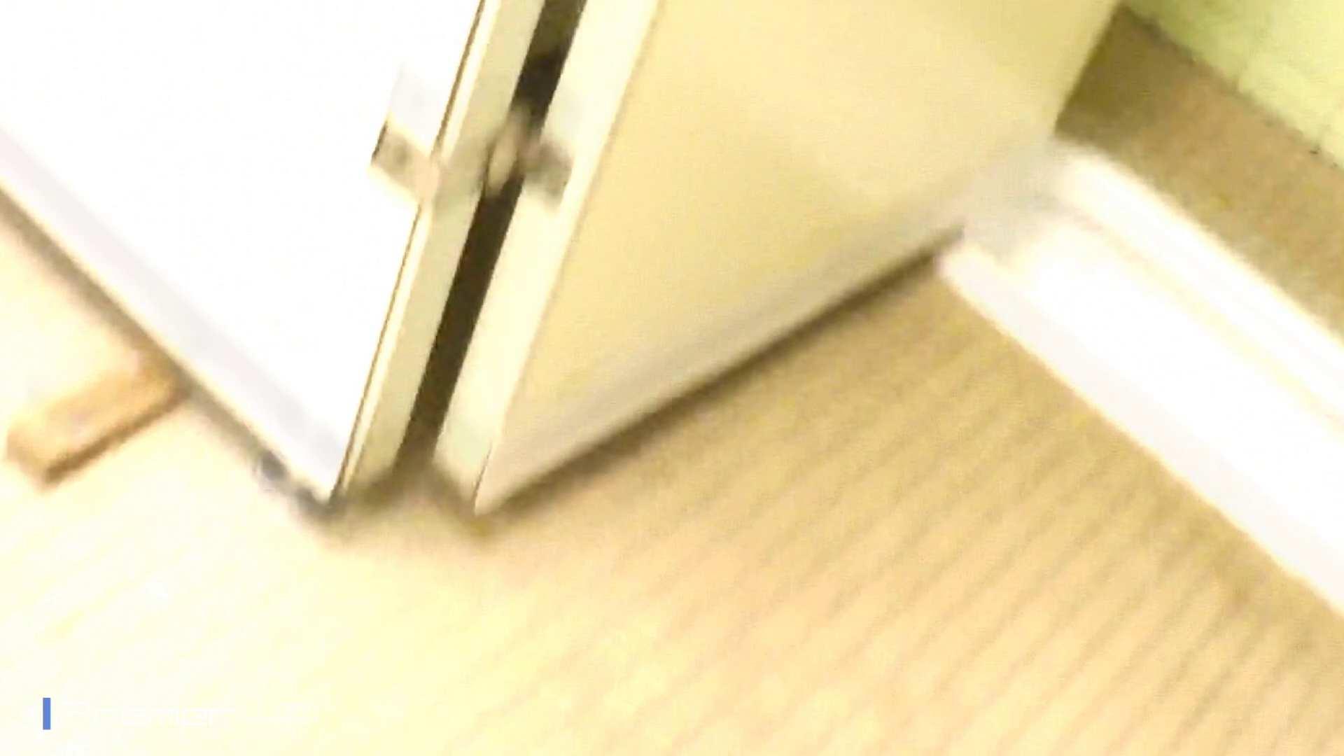 ▲2017_03位▲ 復讐のトイレ盗撮 Vol.01 美肌  97PIX 63