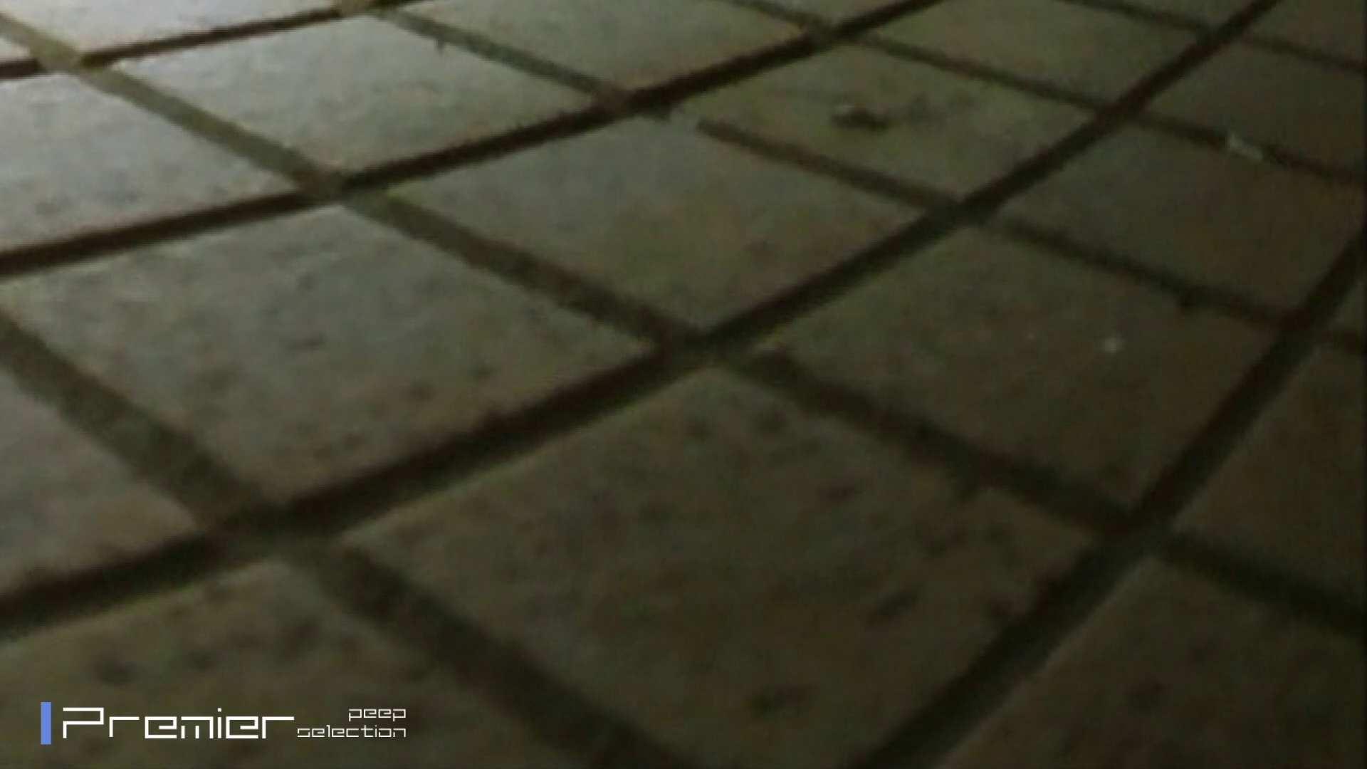 FHD激カワ!激やば! 復讐のトイレ盗撮 Vol.03 名作殿堂  78PIX 16