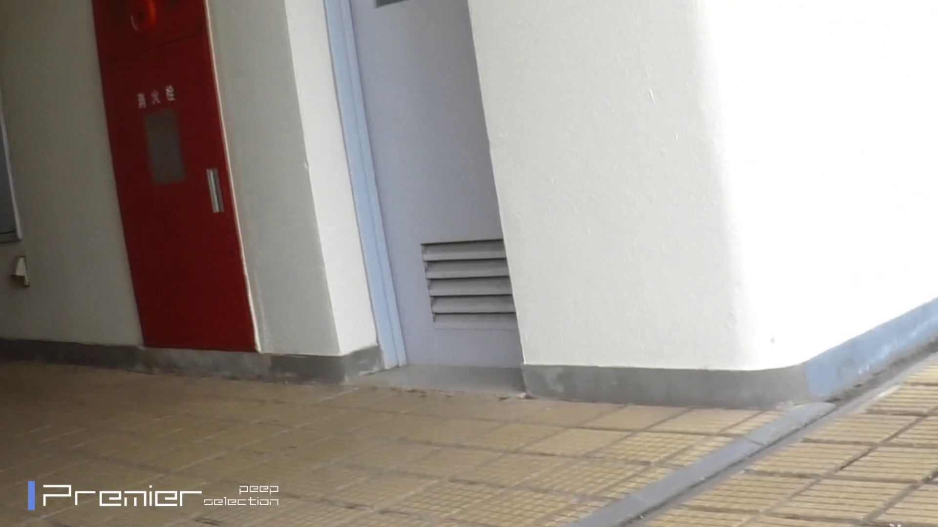 FHD激カワ!激やば! 復讐のトイレ盗撮 Vol.03 名作殿堂  78PIX 29
